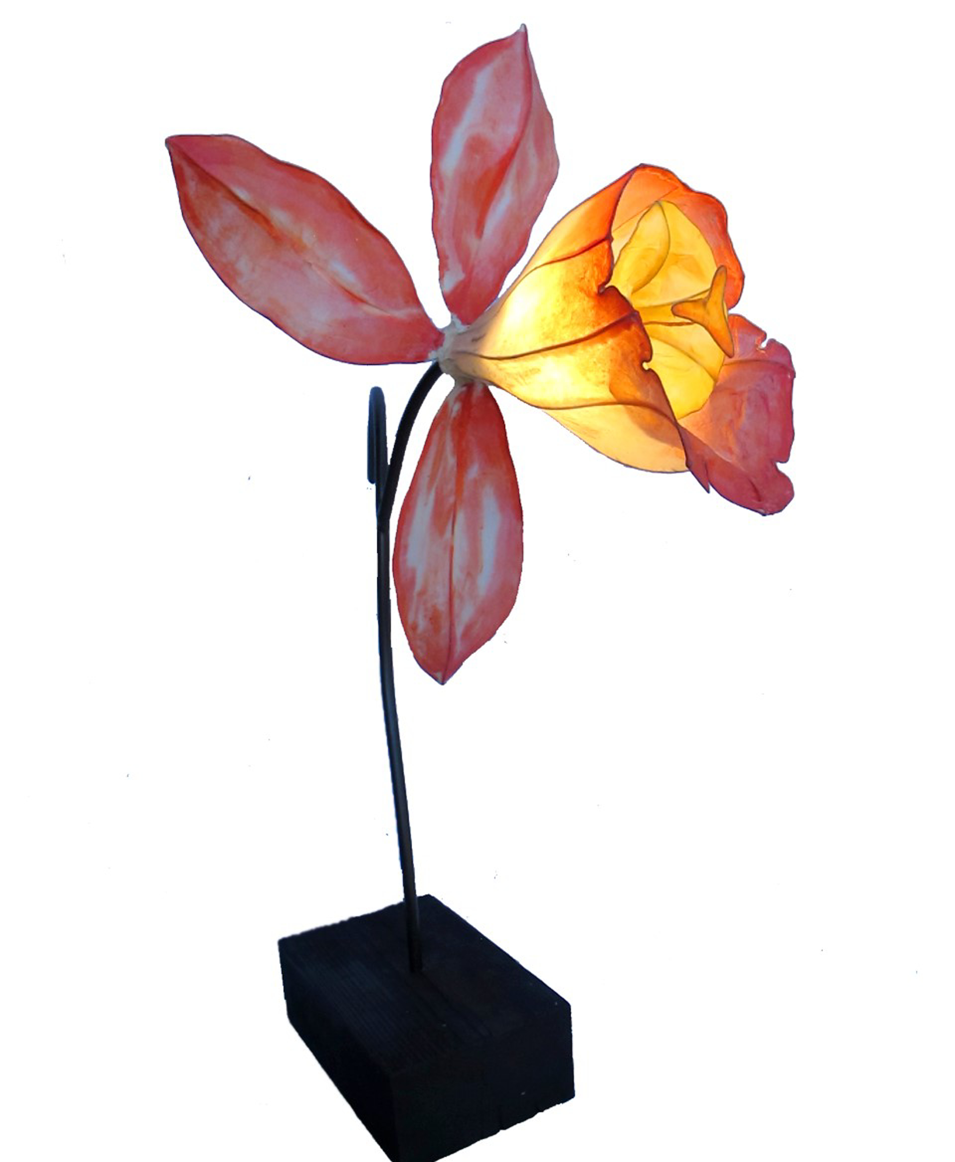 Self Pollinating | Crimson Orchid by HiiH Lights