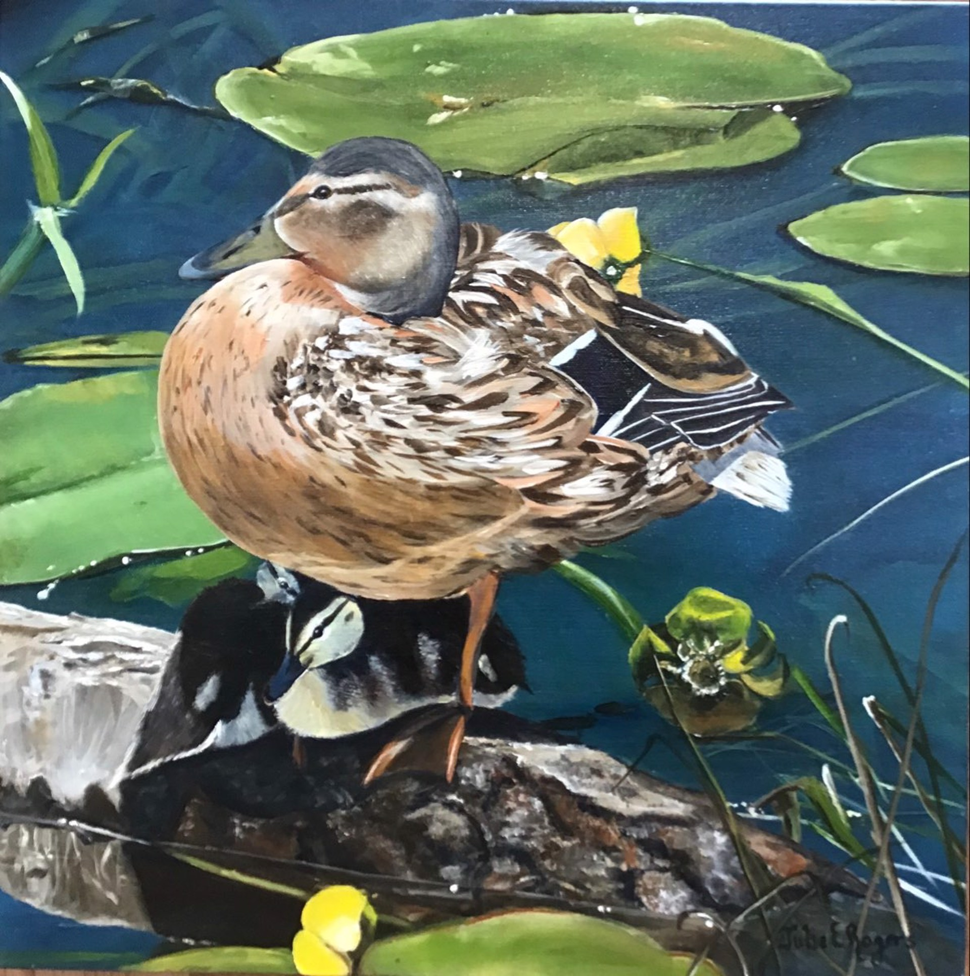 Mother Duck Says by Julie Rogers