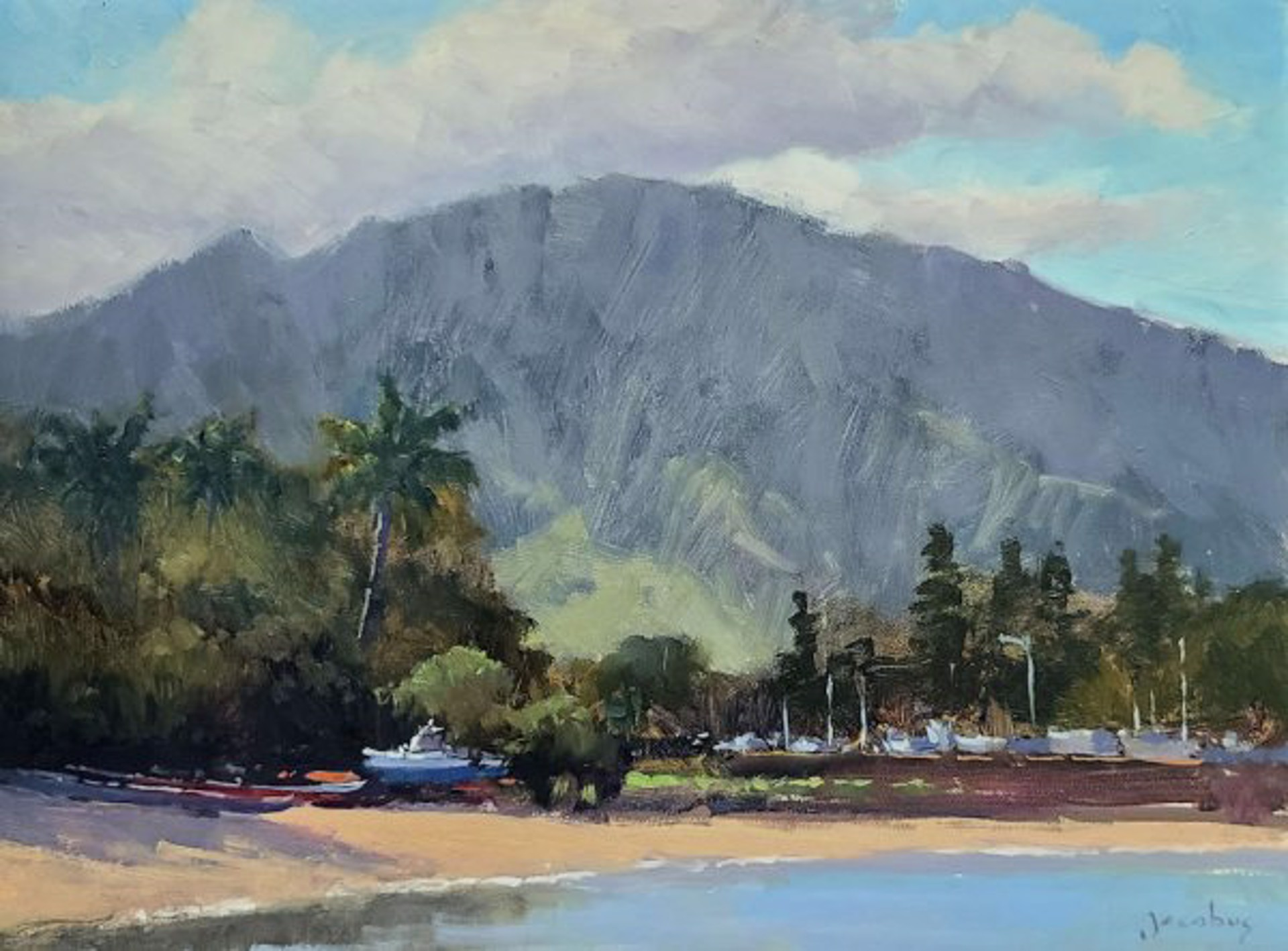 Haleiwa by Jacobus Baas