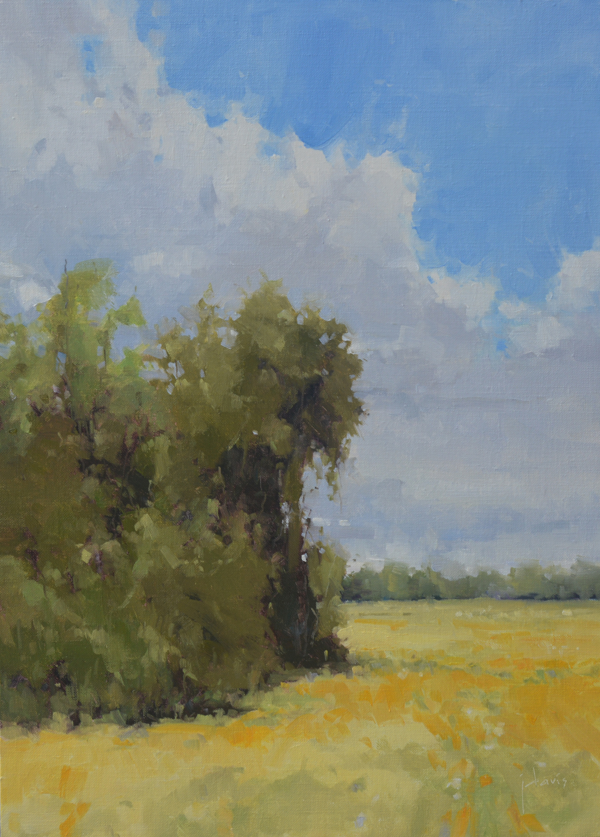 Approaching Rain by Julie Davis