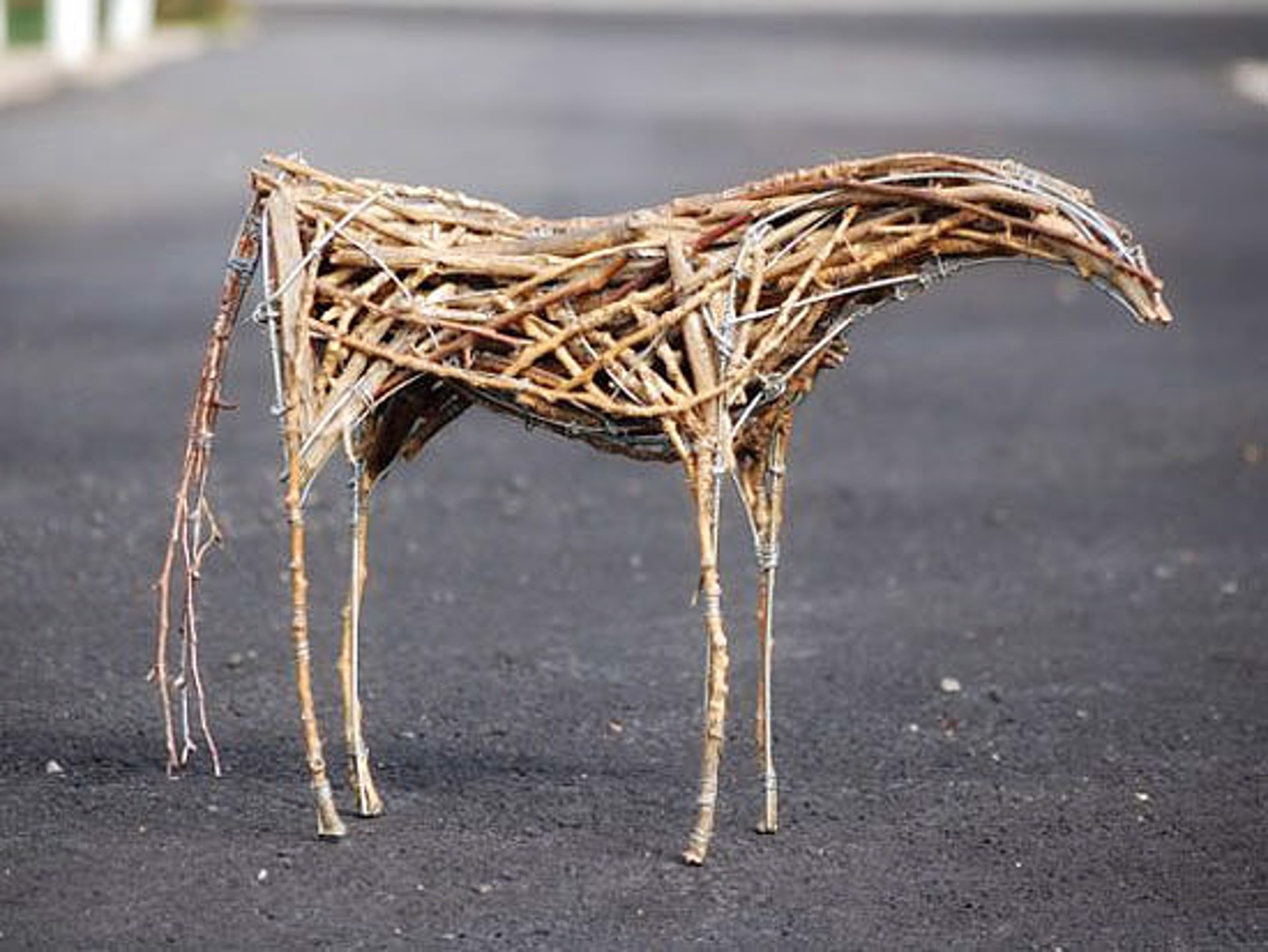 Horse 1 by Ben Owen