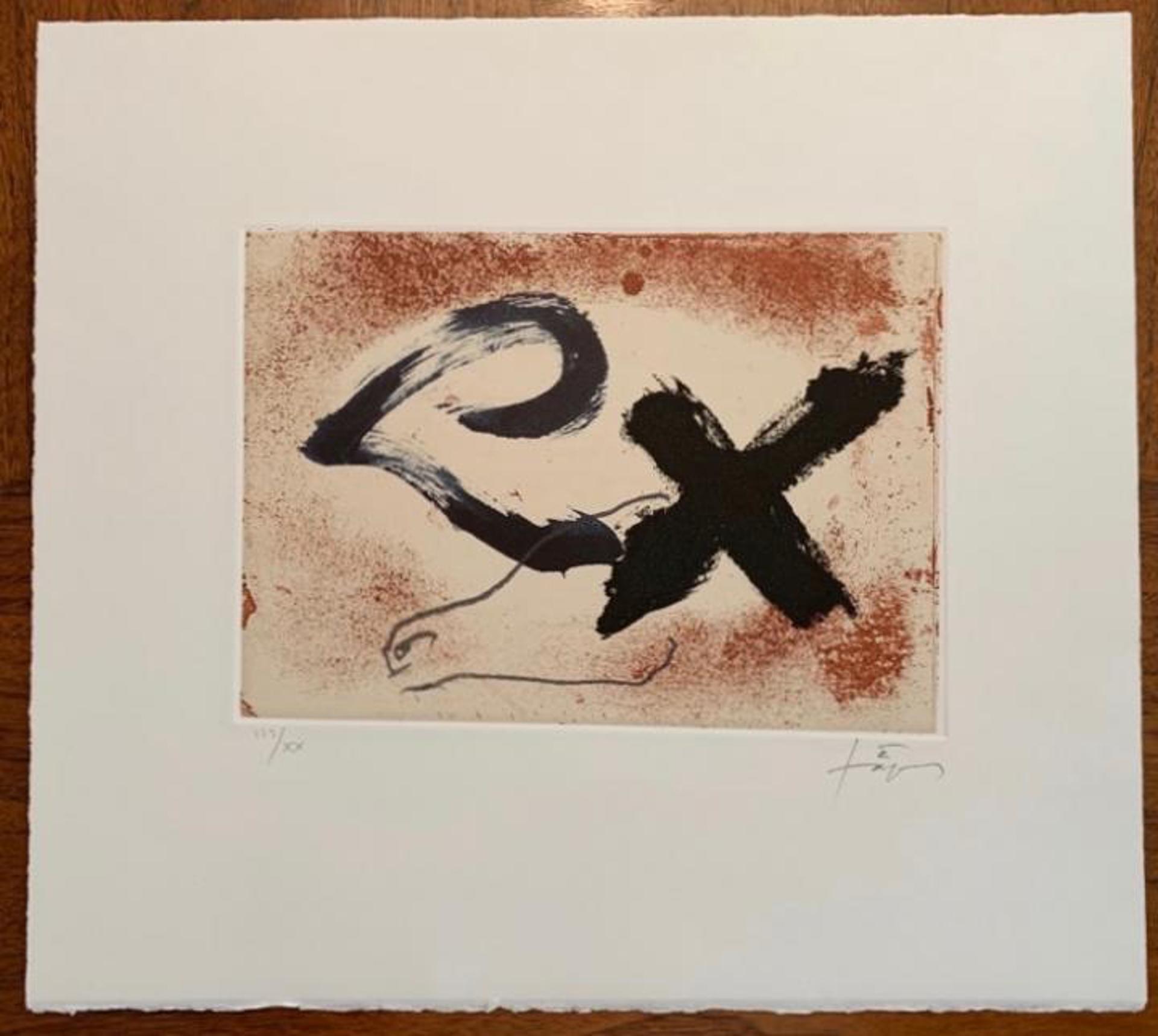 Signes i oxid by Antoni Tapies