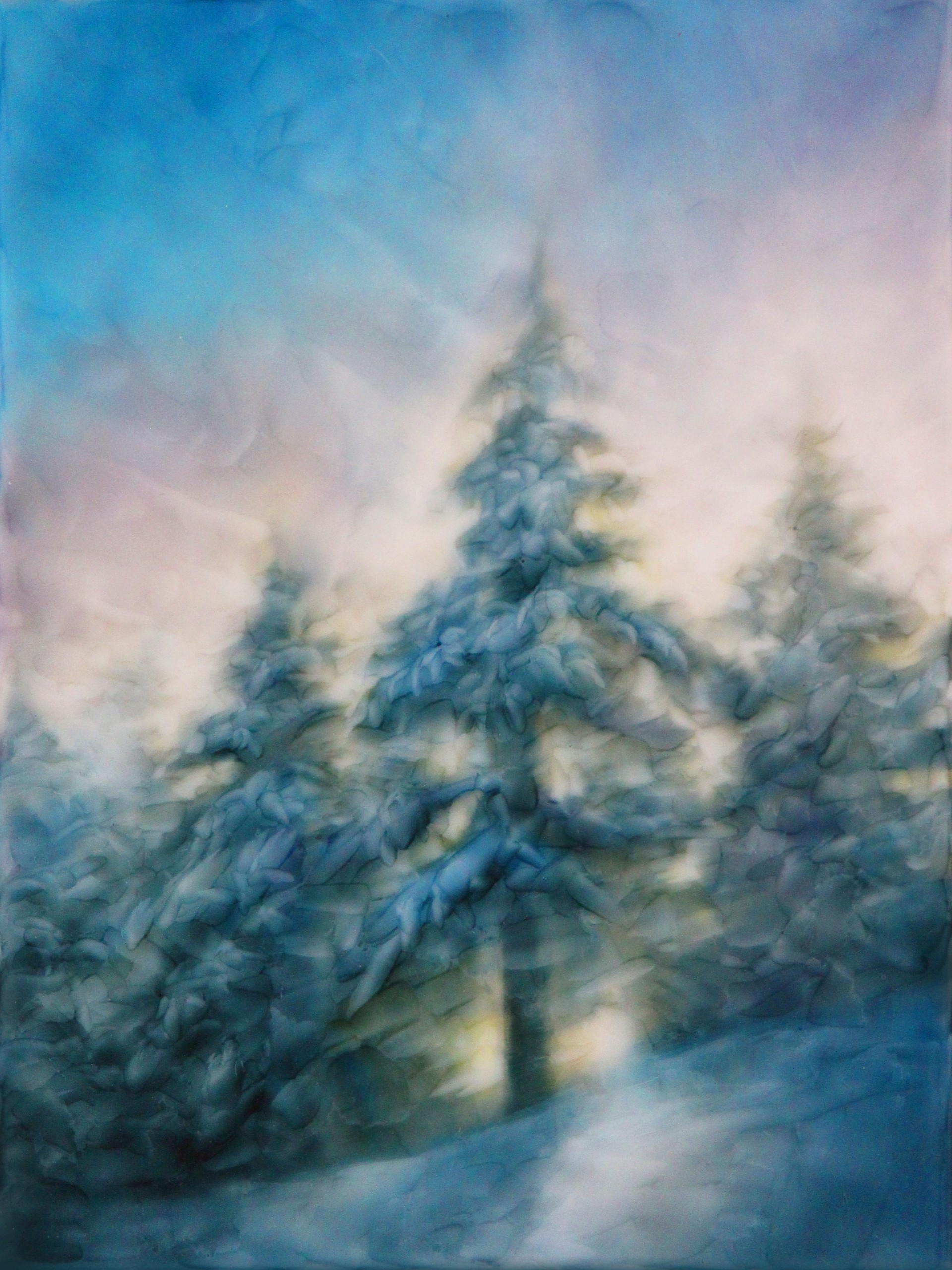January Blanket by Brian Sostrom