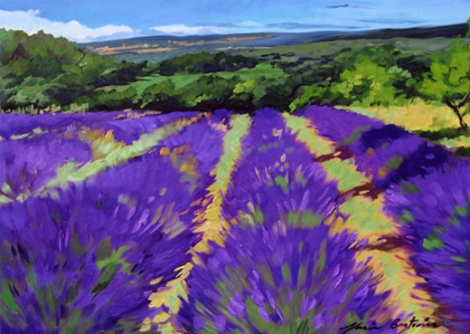St. Saturnin Lavender by Maria Bertrán