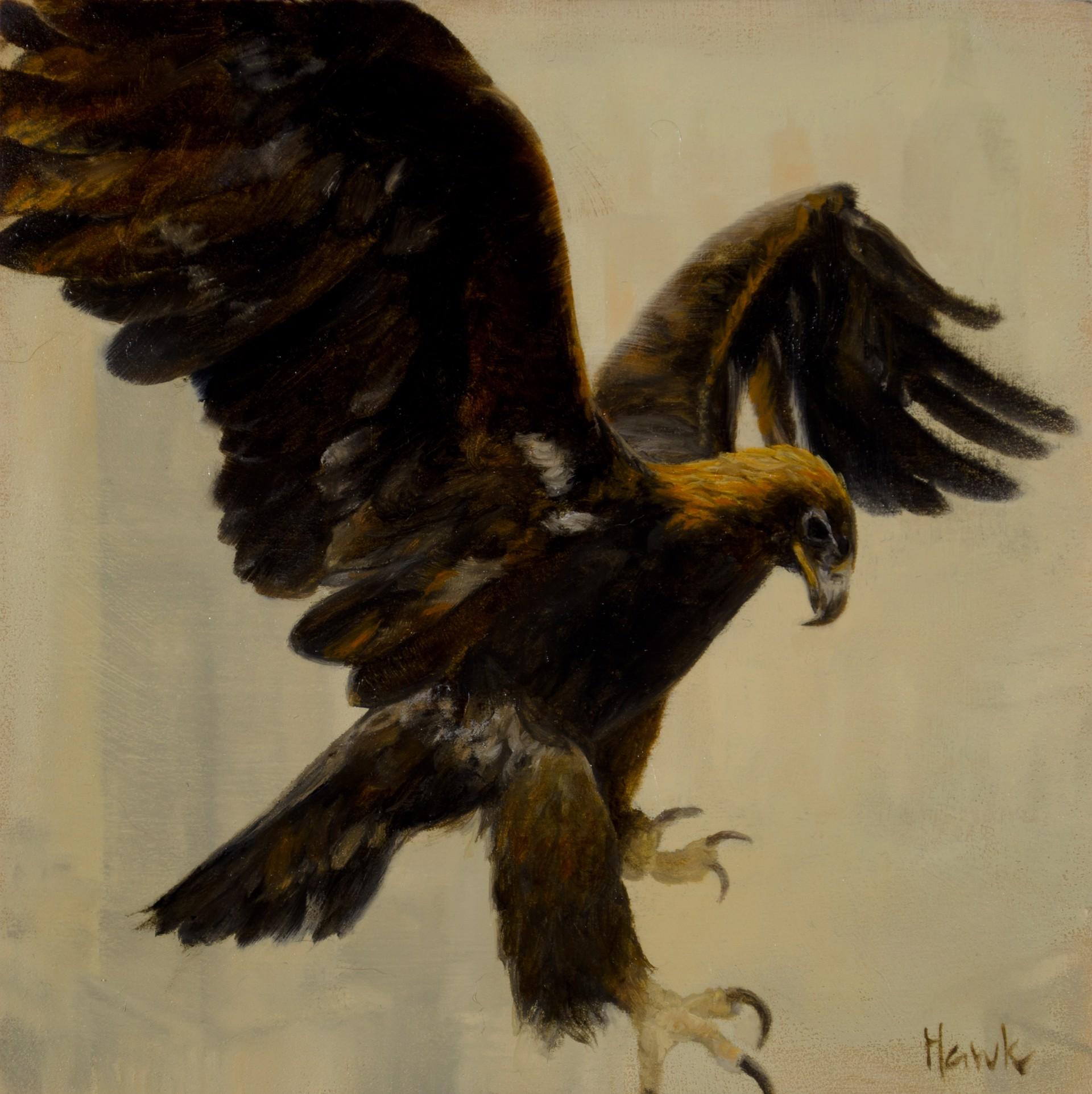 City Eagle by Dana Hawk