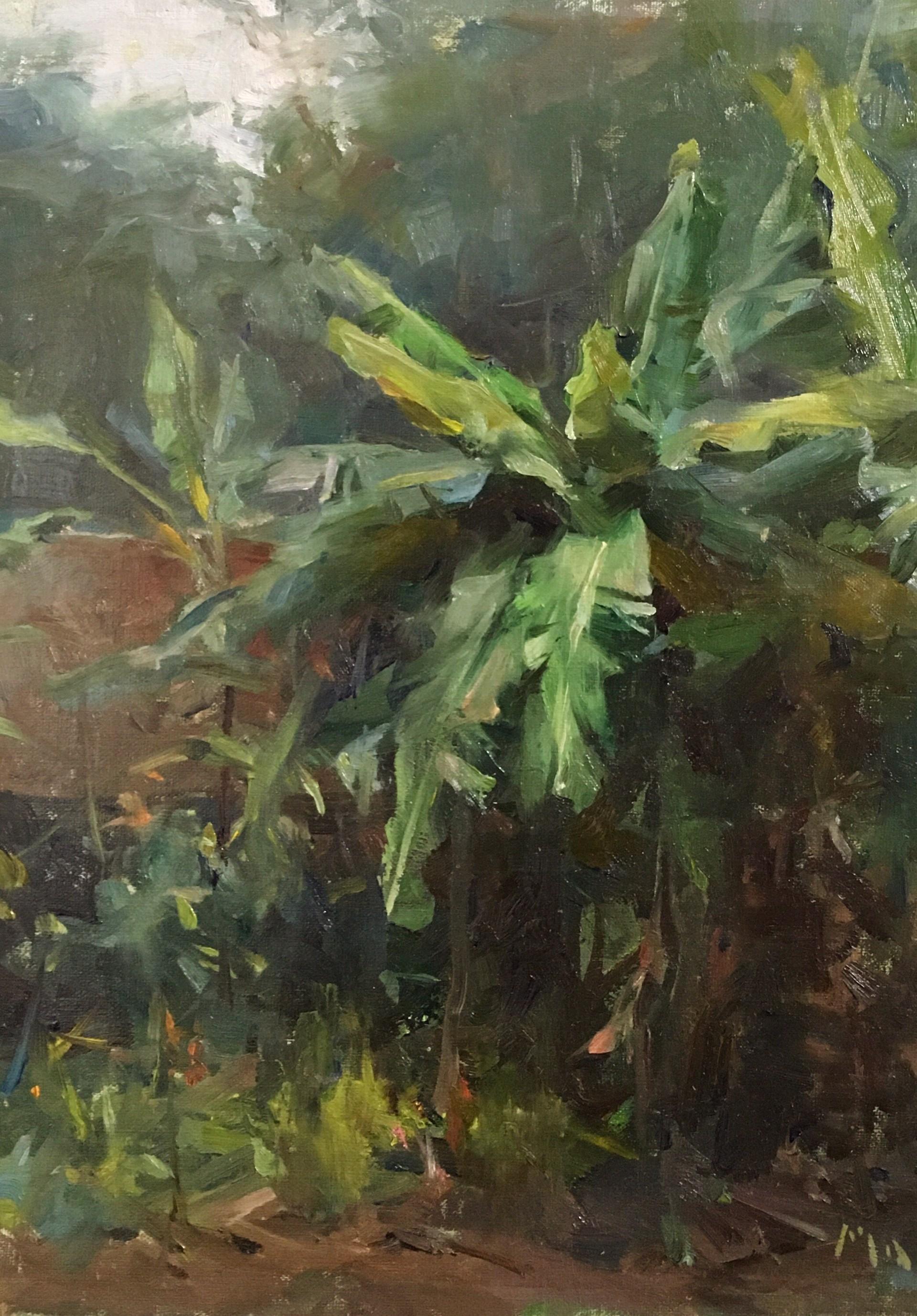 Banana Trees by Jiantan Temple by Kyle Ma
