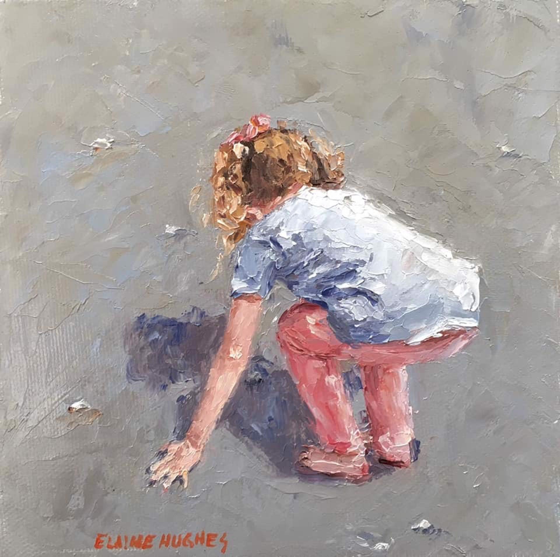 Seashells 2 by Elaine Hughes