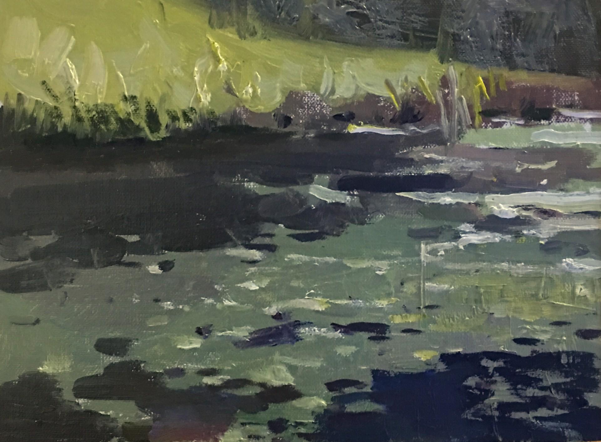 Rocks and Water by Jason Sacran