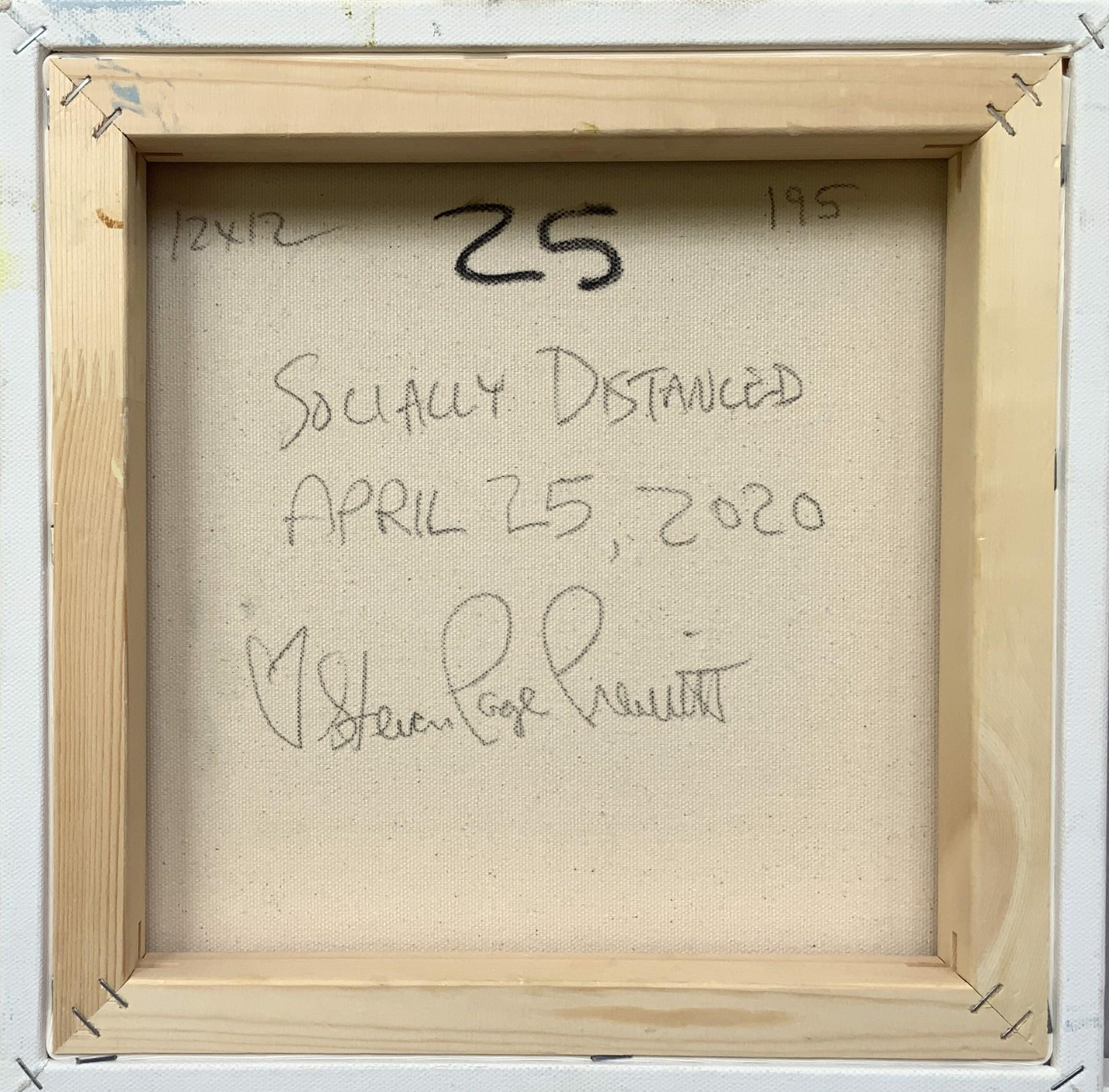 Socially Distanced 25 by Steven Page Prewitt