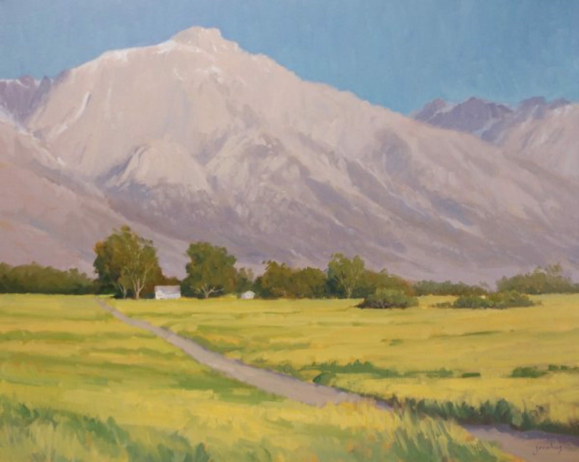 Spring In Owens Valley by Jacobus Baas