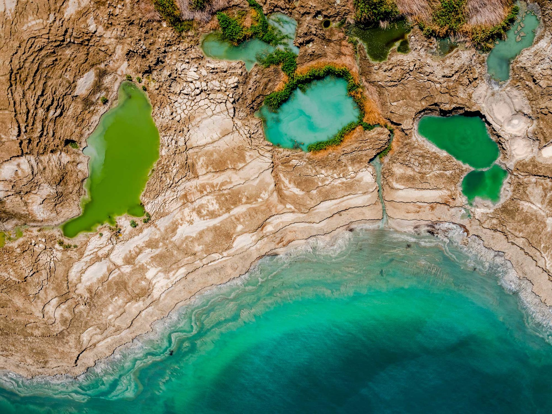 Pools of Life, Dead Sea-Israel by Dinesh Boaz
