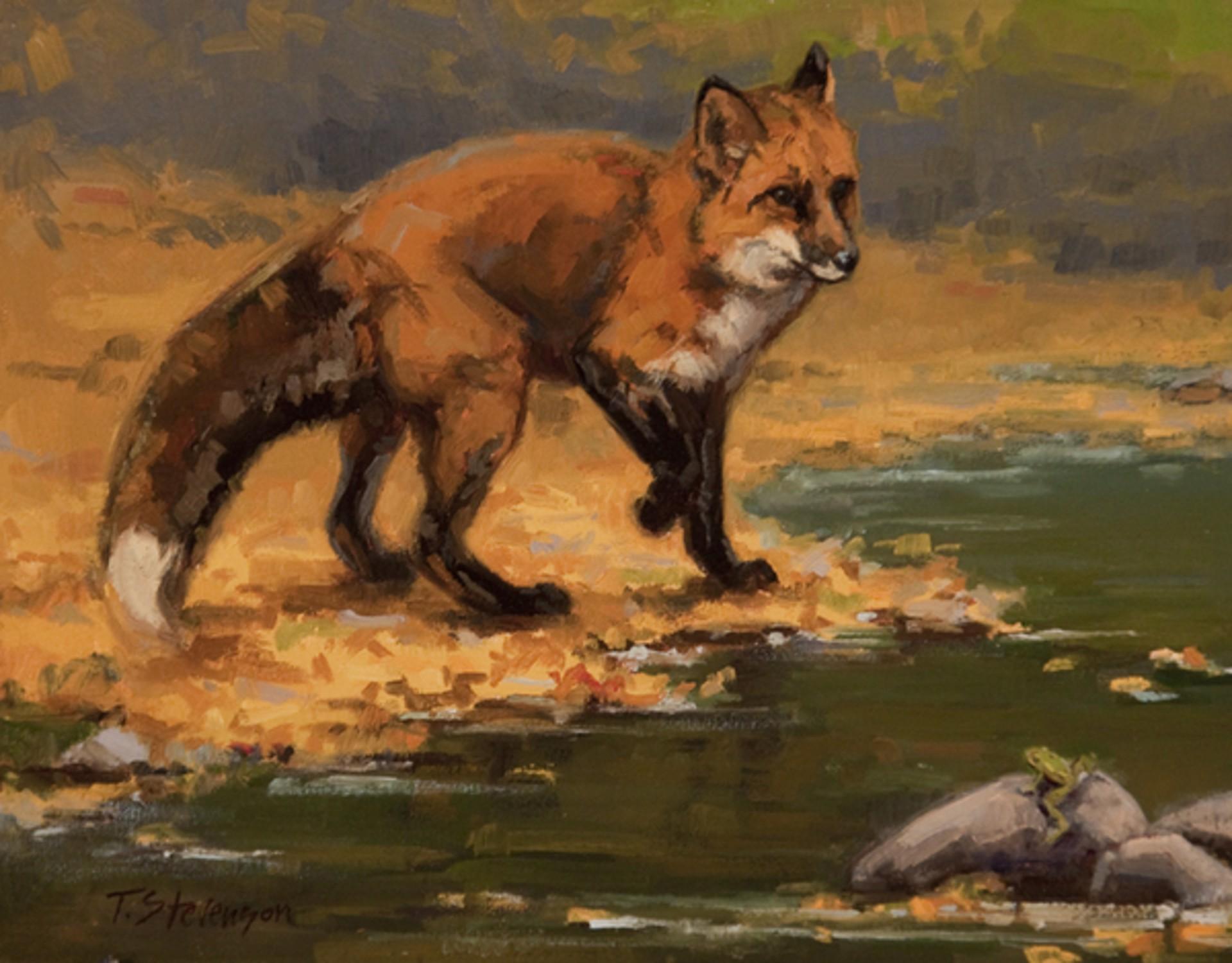 The Next Step (Fox) by Tiffany Stevenson