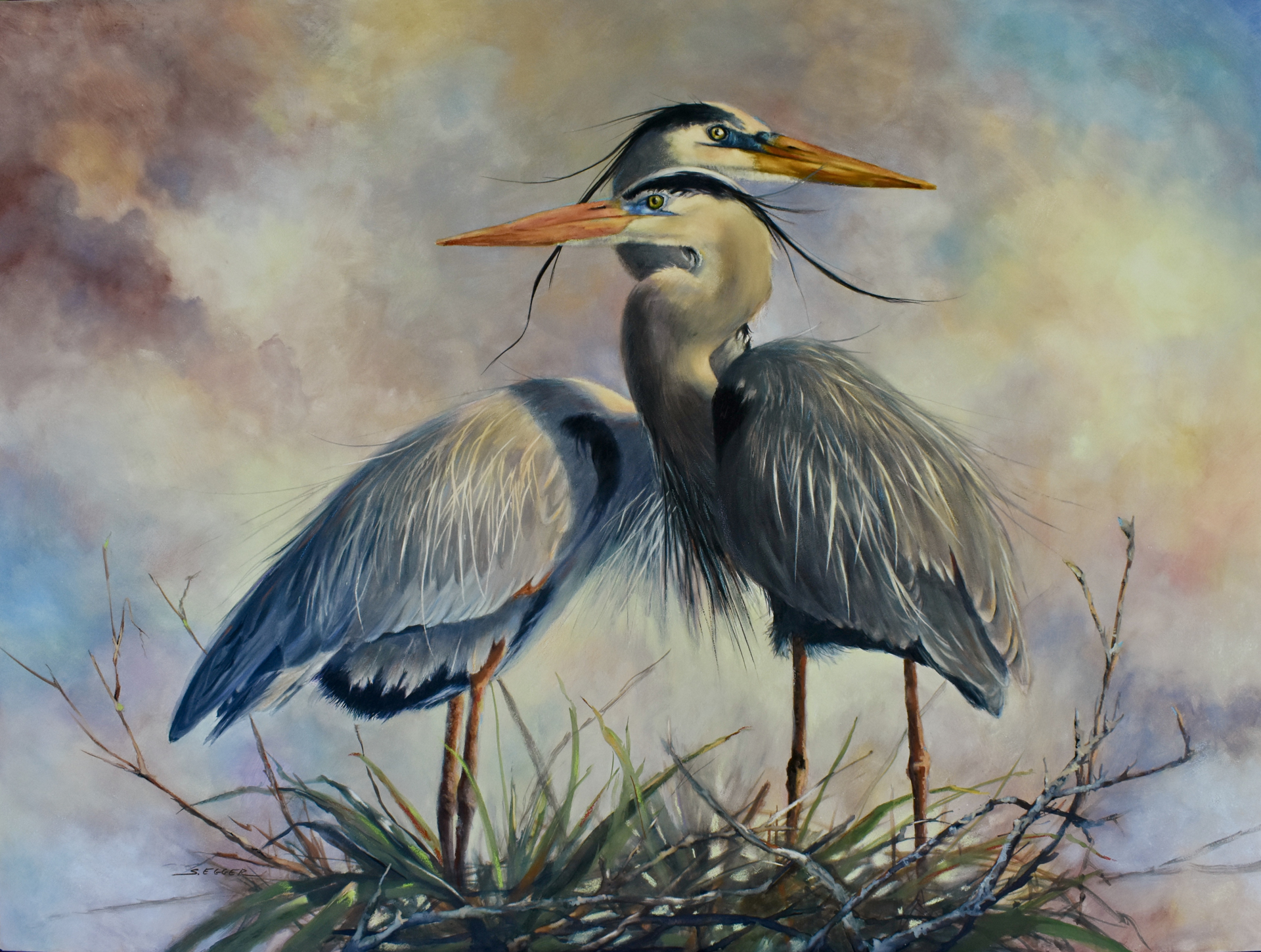 Great Blue Herons by Sherry Egger