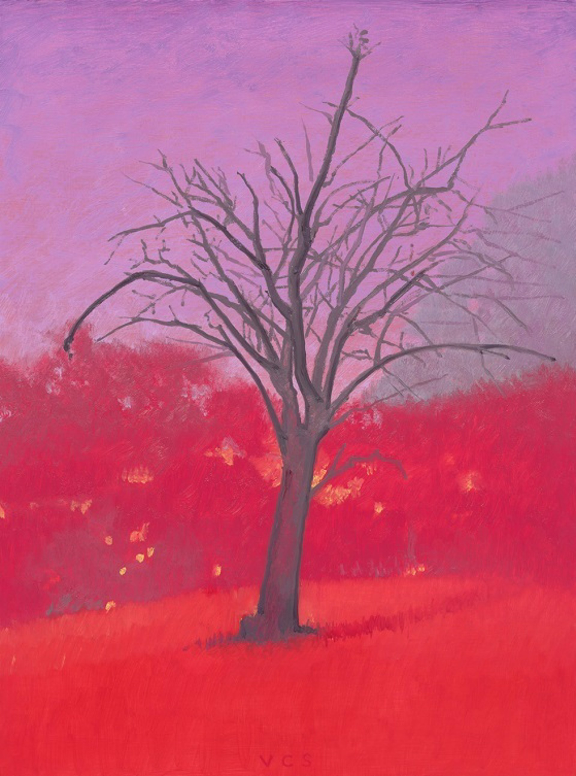 Little Almond Tree 1 by Vonn Cummings Sumner