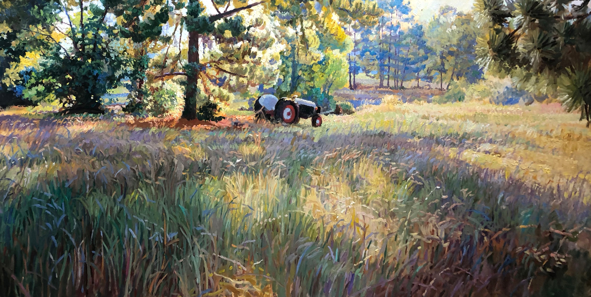 Splendor in the Grass by Lee Jamison