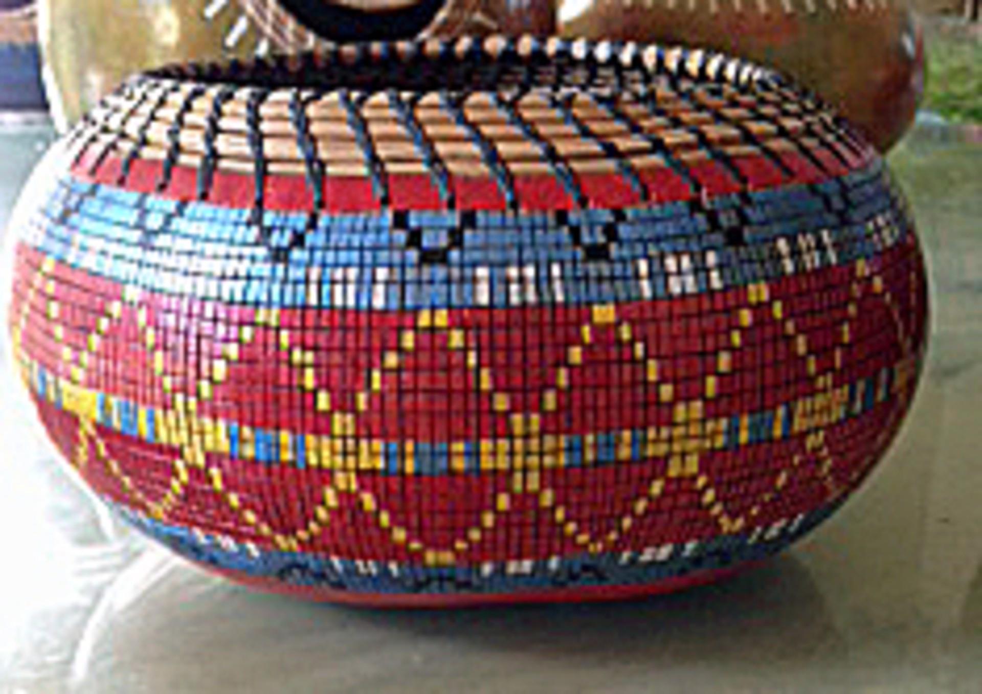 Pixels Go Native #3 by Judy Kelley