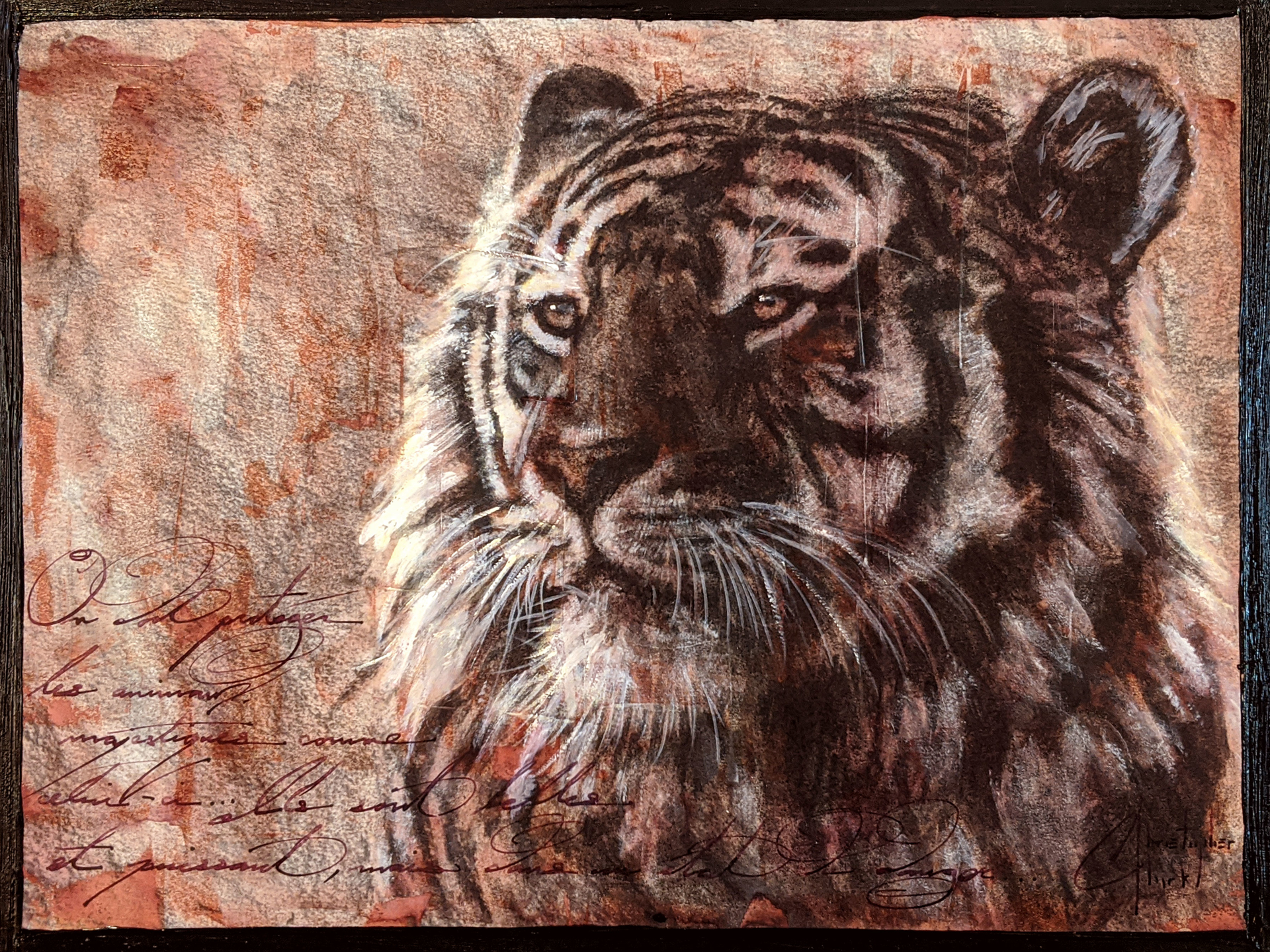 Sepia Cats, Tiger by Christopher Clark