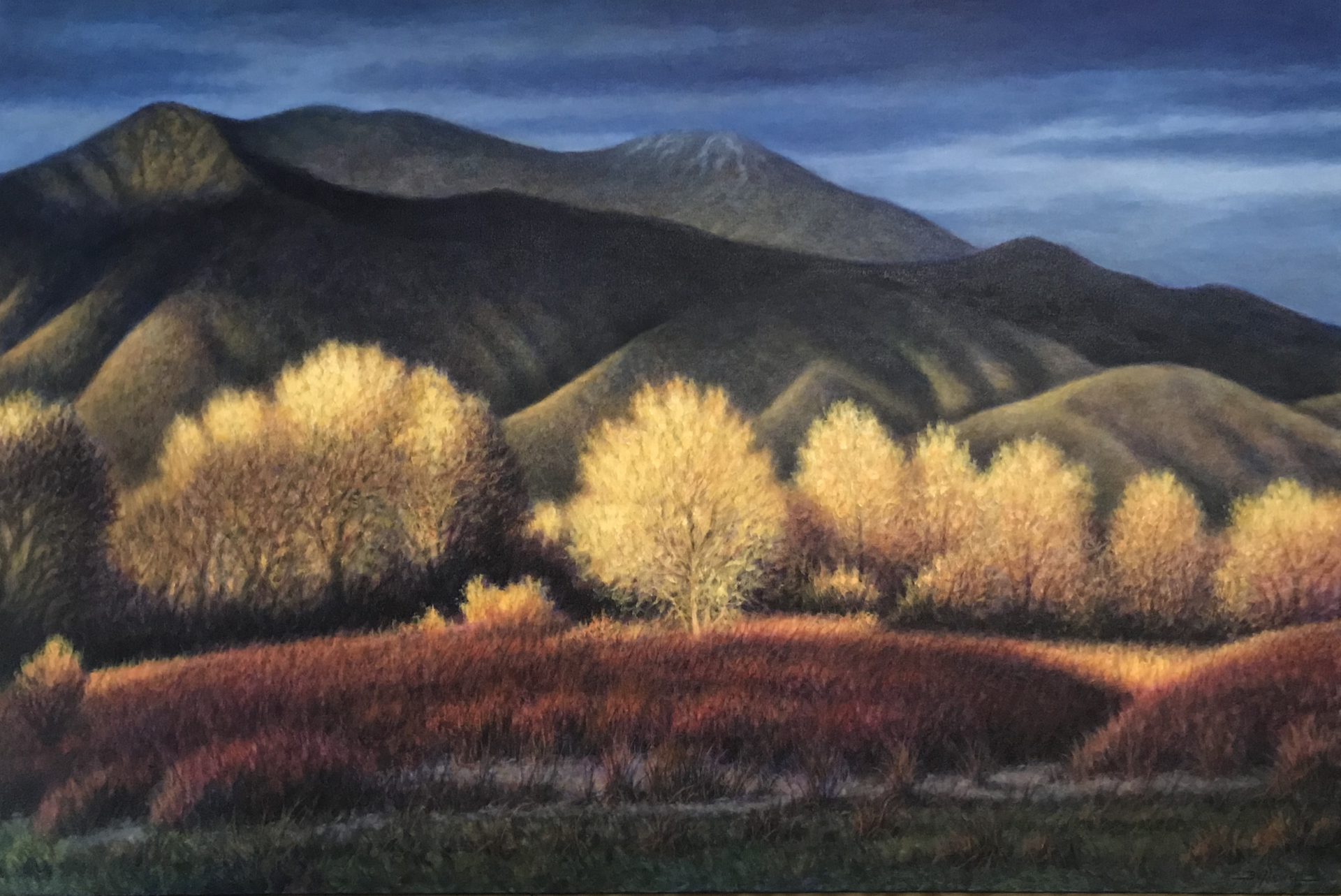 Trees in Autumn by Bo Newell
