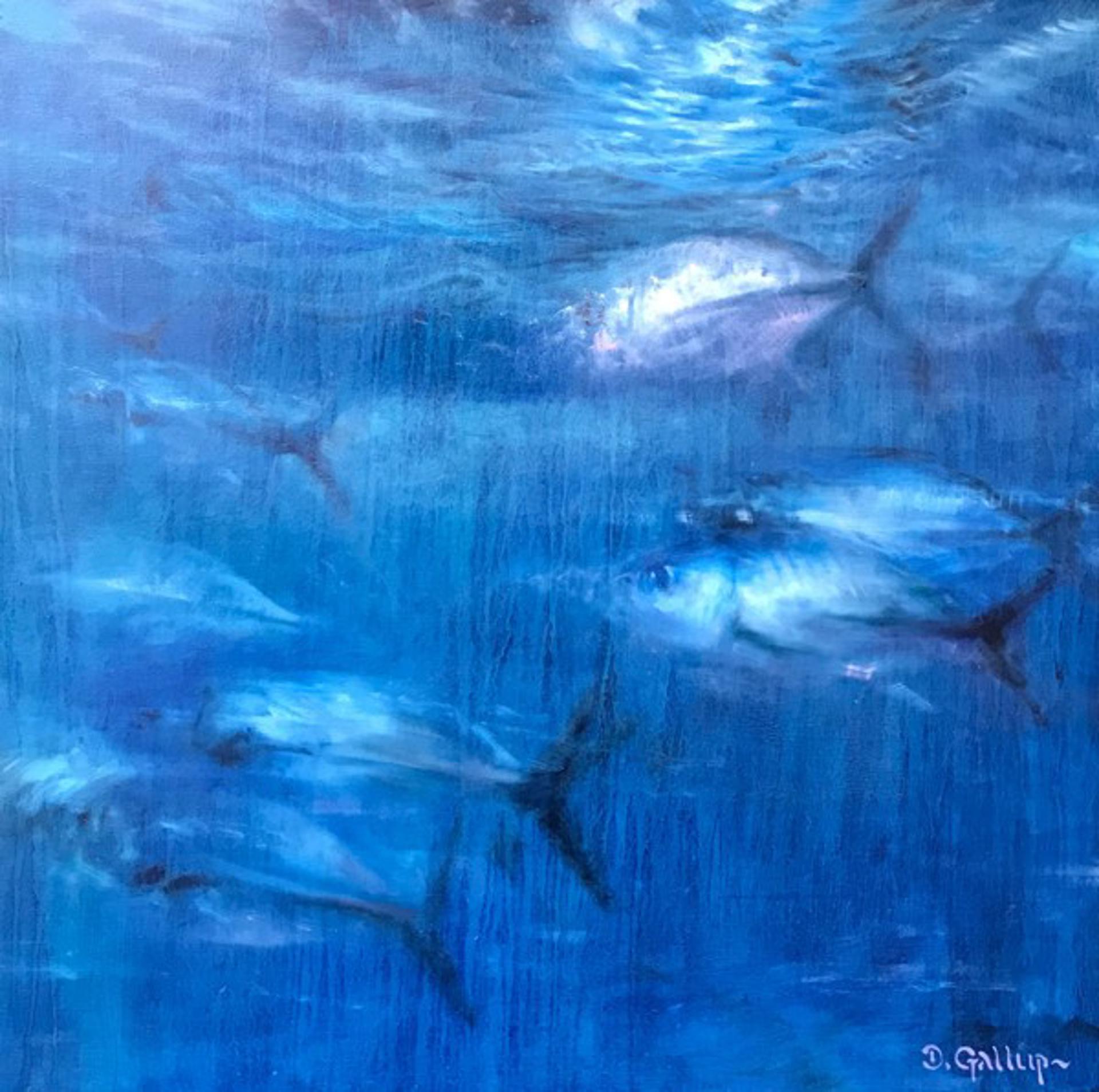 Blue Trevally in Moonlight by David Gallup