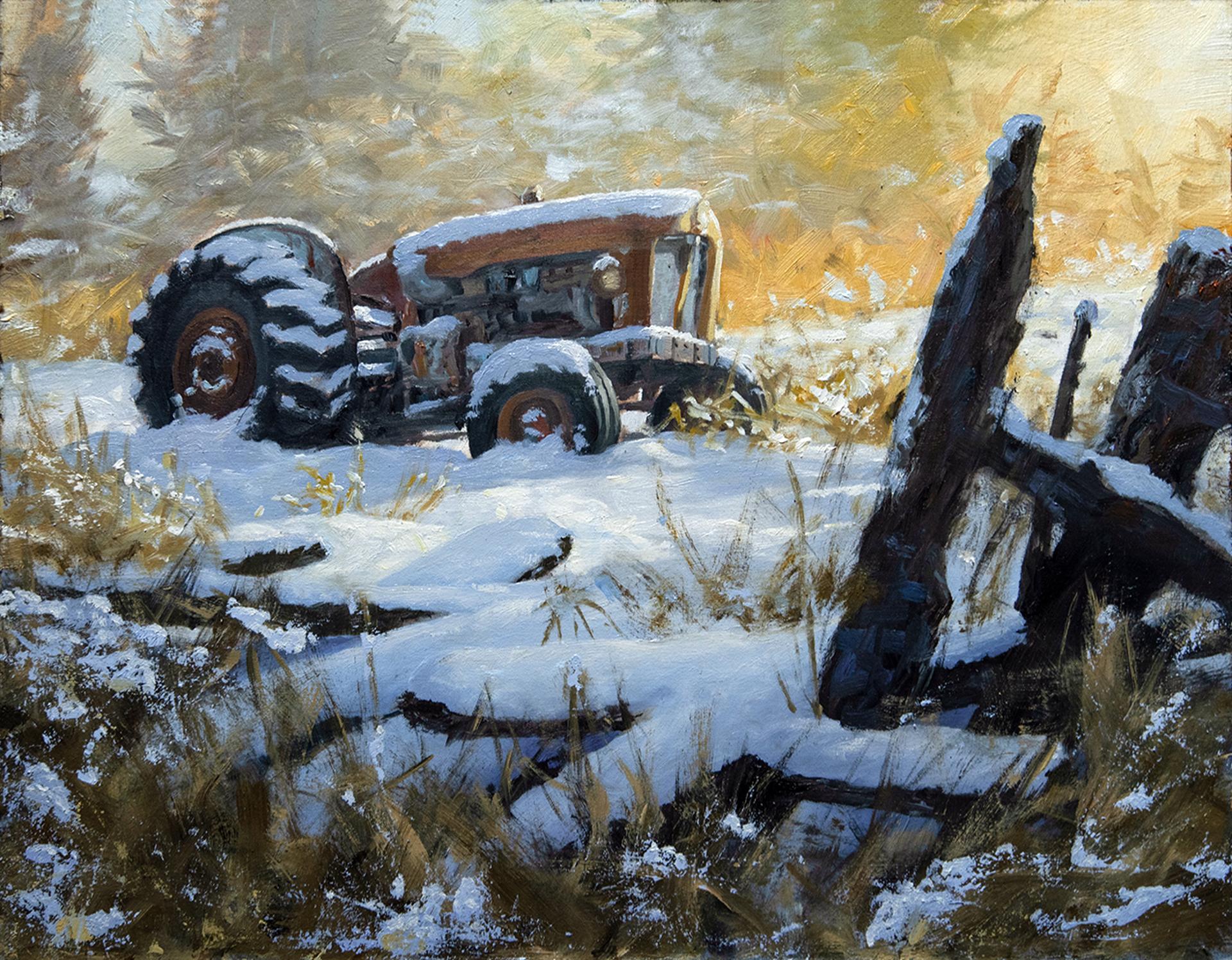 Sunny Morning by Oscar Campos
