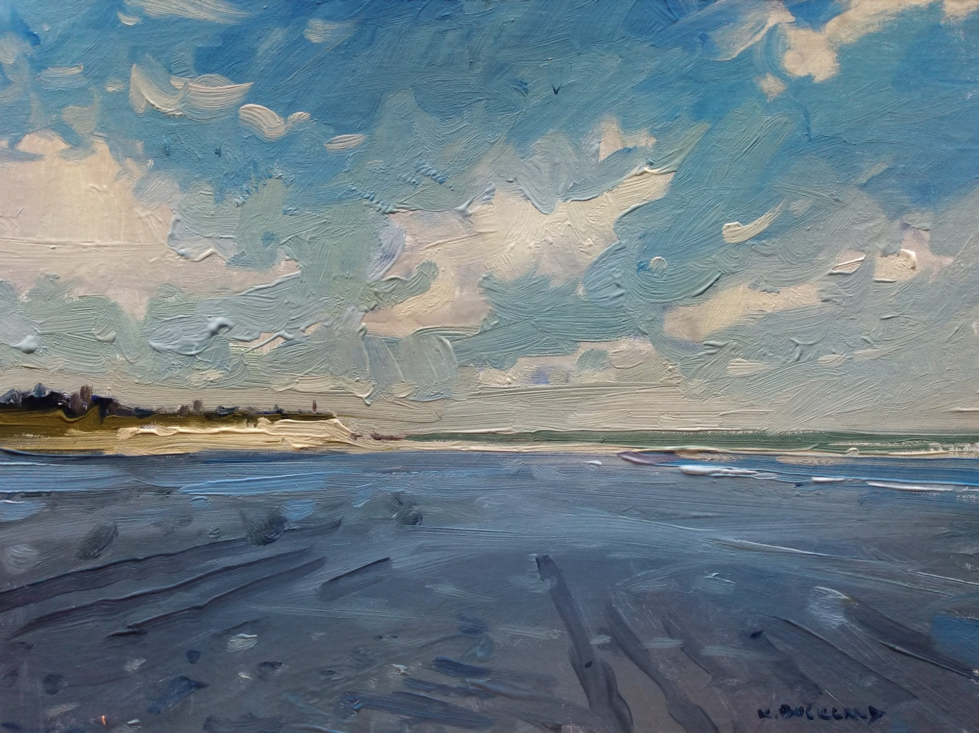 The Cloud Shadow - Folly Beach by Kyle Buckland