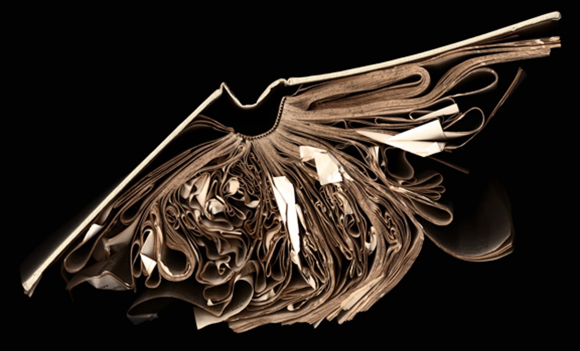 Tilted A-L by Cara Barer