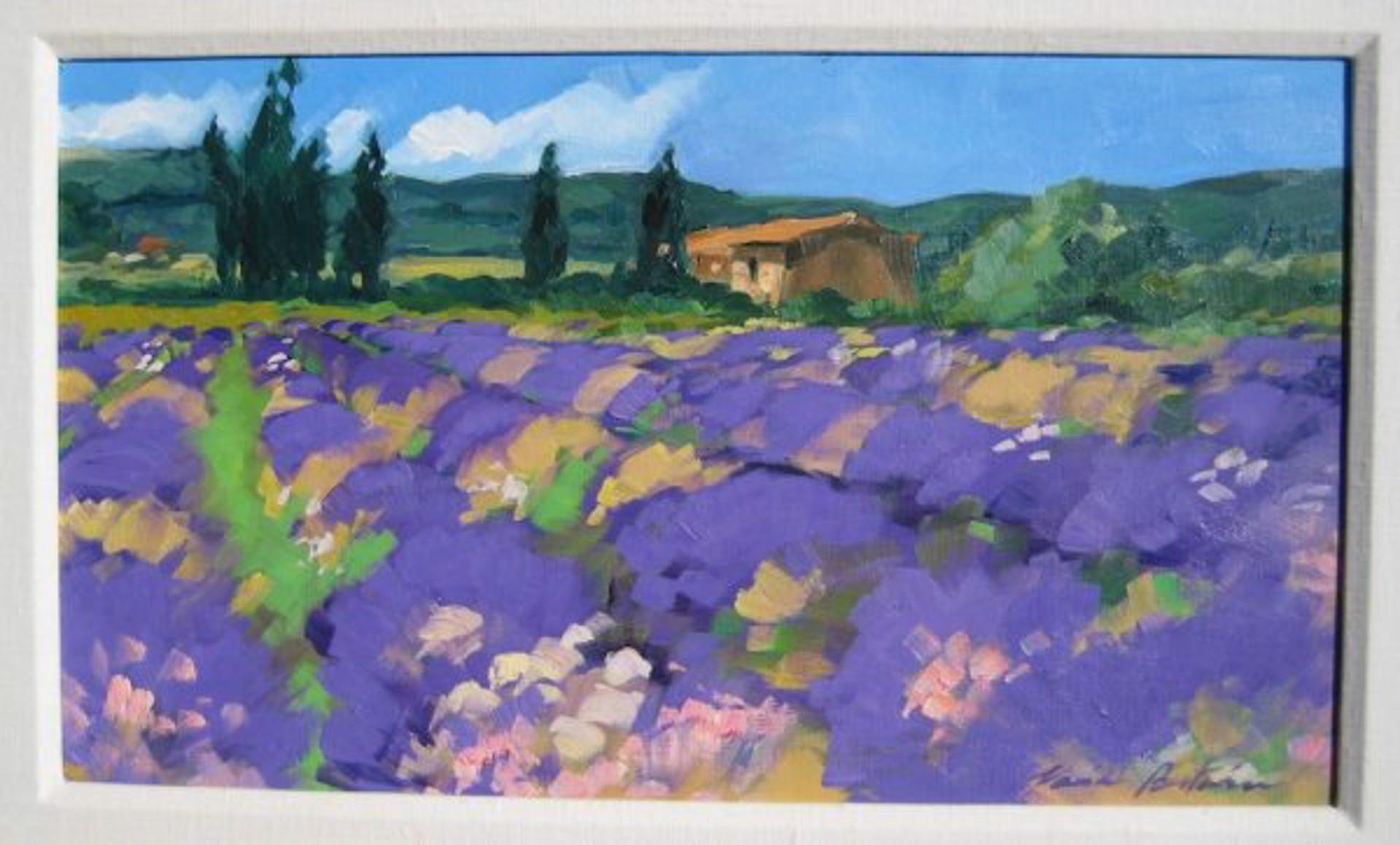 Bertran: Spring Lavender by Maria Bertrán
