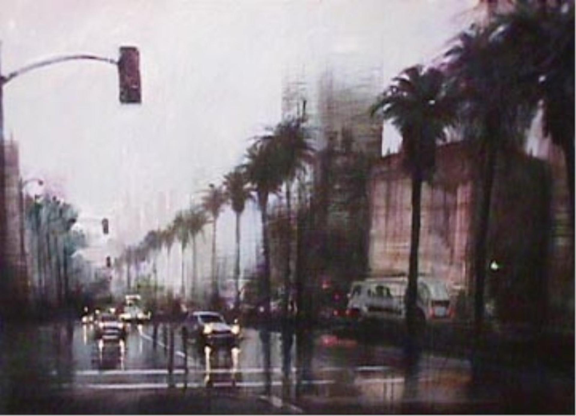 Rainy Day on Wilshire by Aldo Luongo