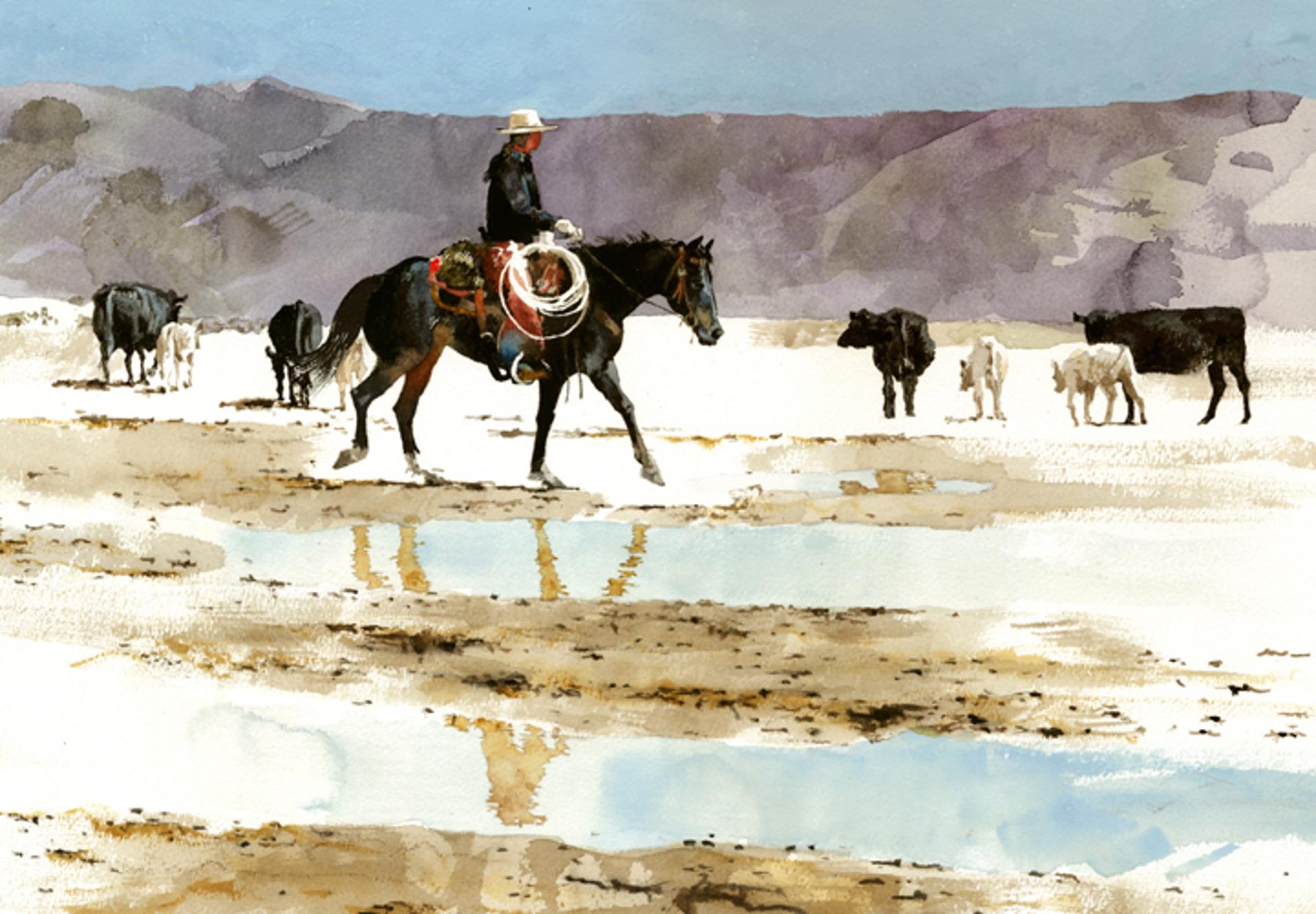 After the West Desert Rain by Don Weller