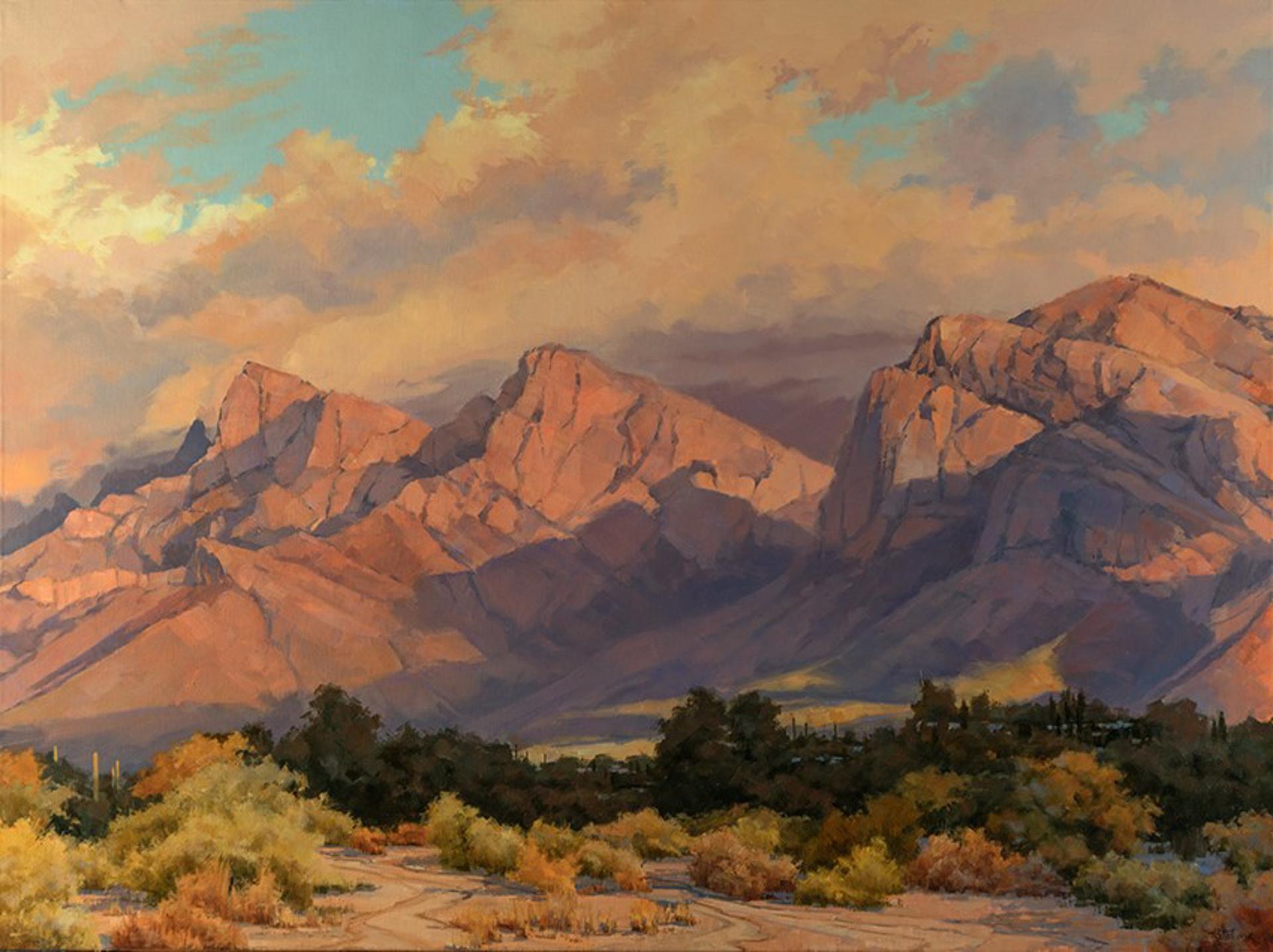 Pastel Desert Dusk by Darcie Peet