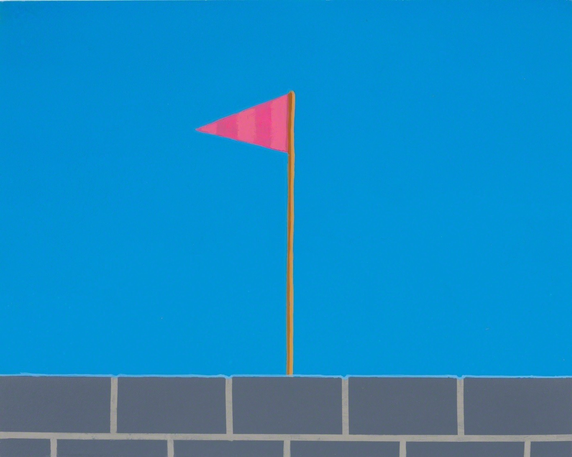 Pink Flag by Vonn Cummings Sumner