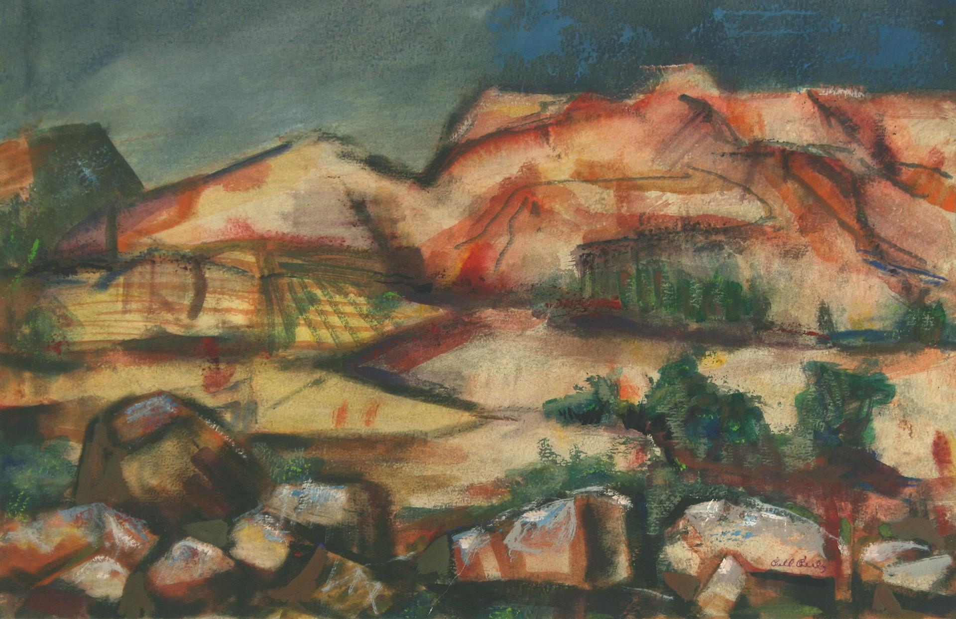 Big Bend Landscape by Bill Reily