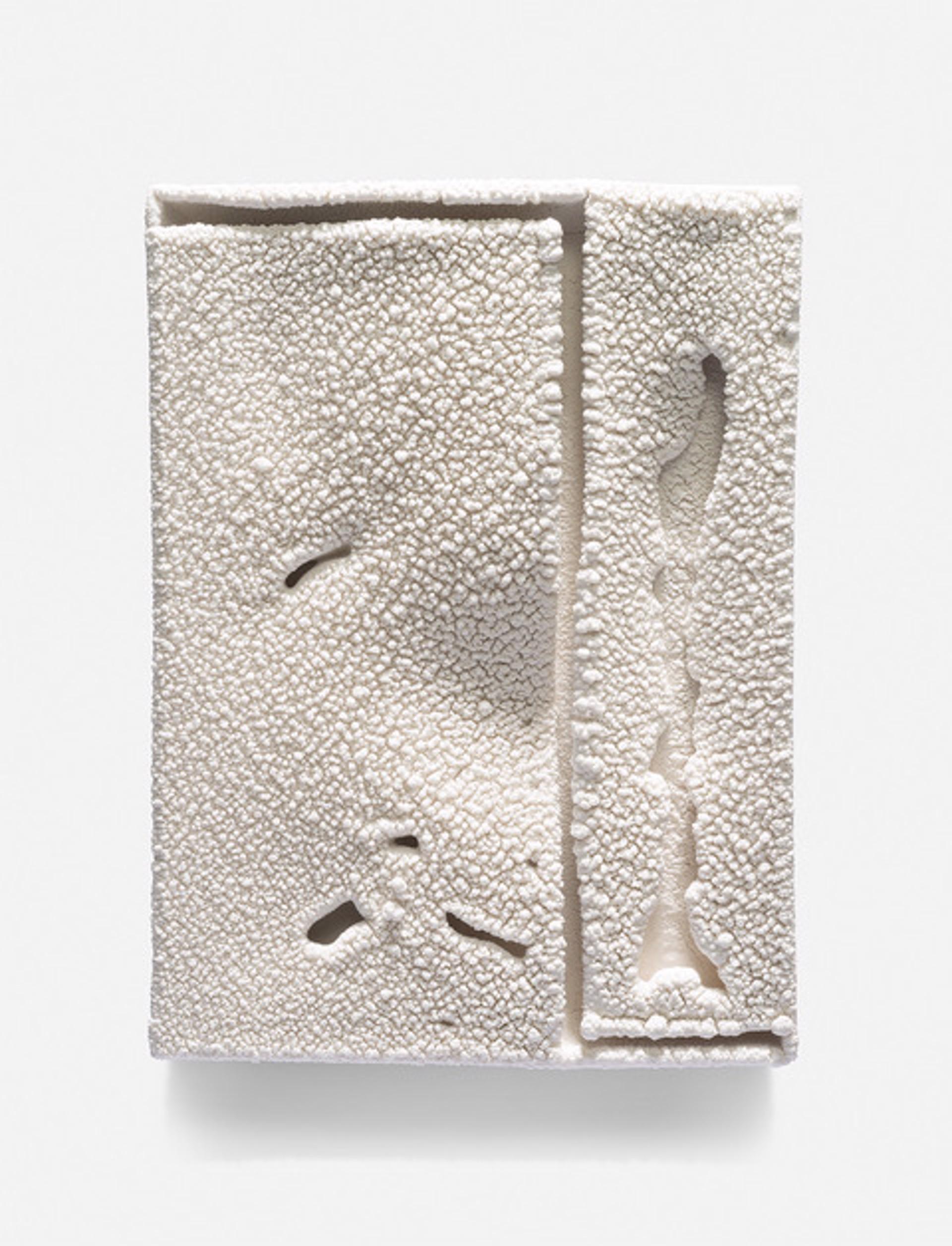 Parfleche (w206) by Cary Esser
