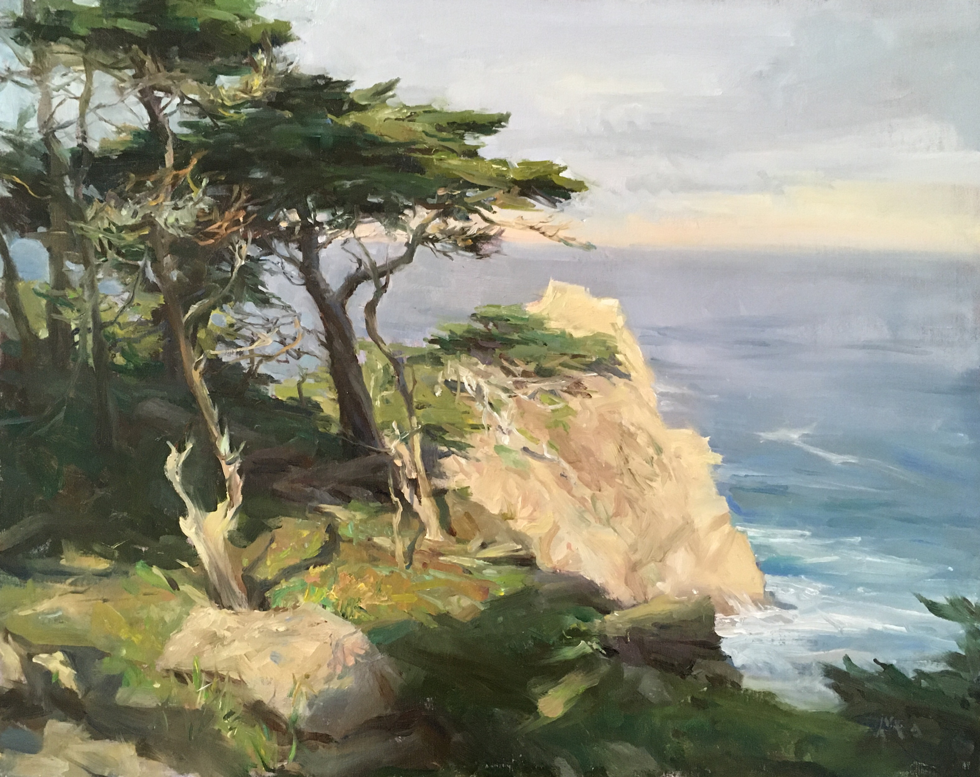 Cliff Side Cypress by Kyle Ma