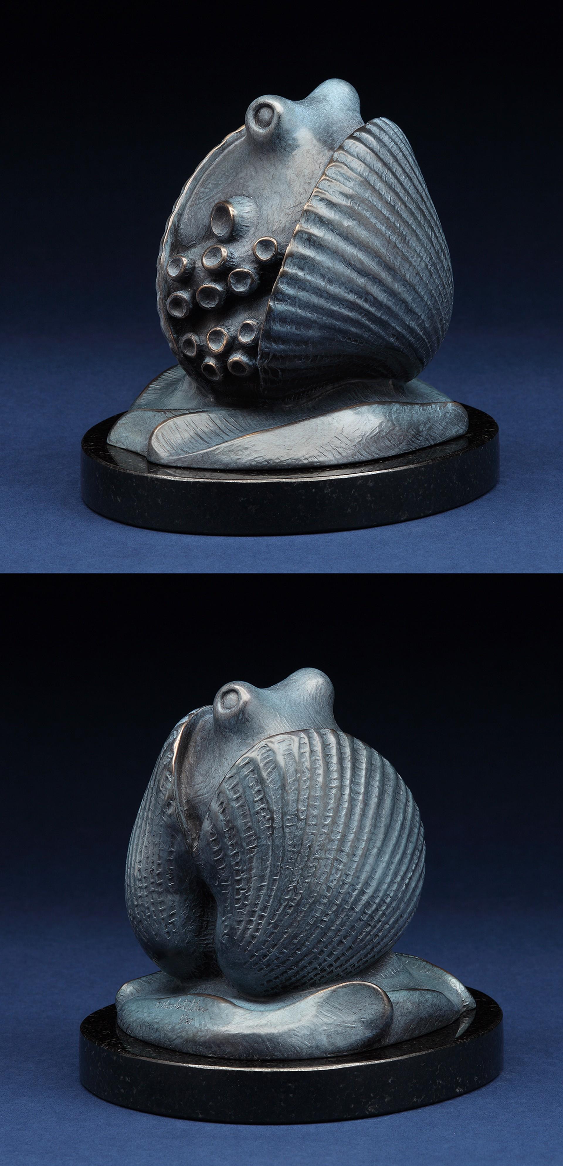 Octopus and Shell by Tony Hochstetler