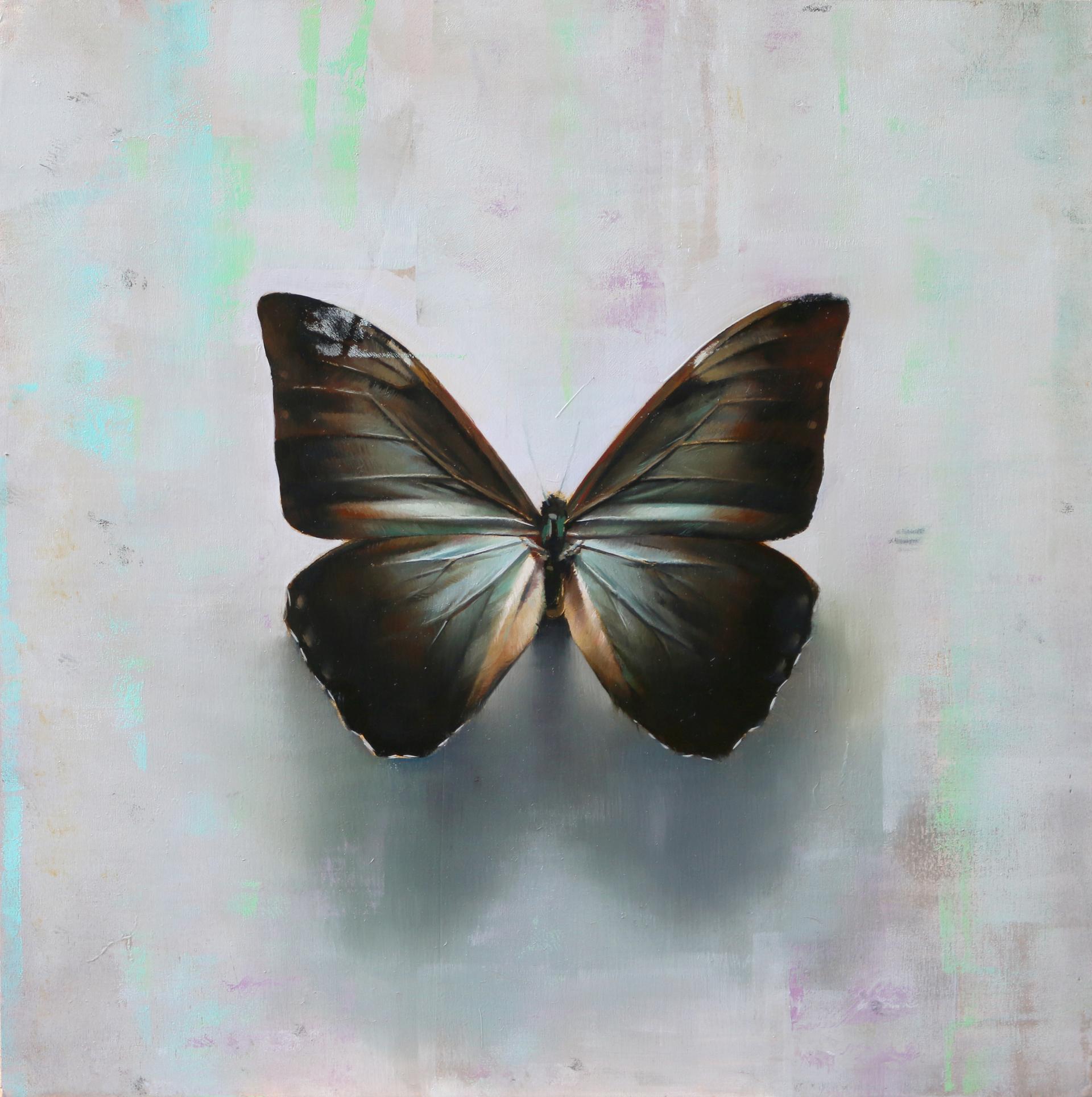 Butterfly, A.a by Alpay Efe