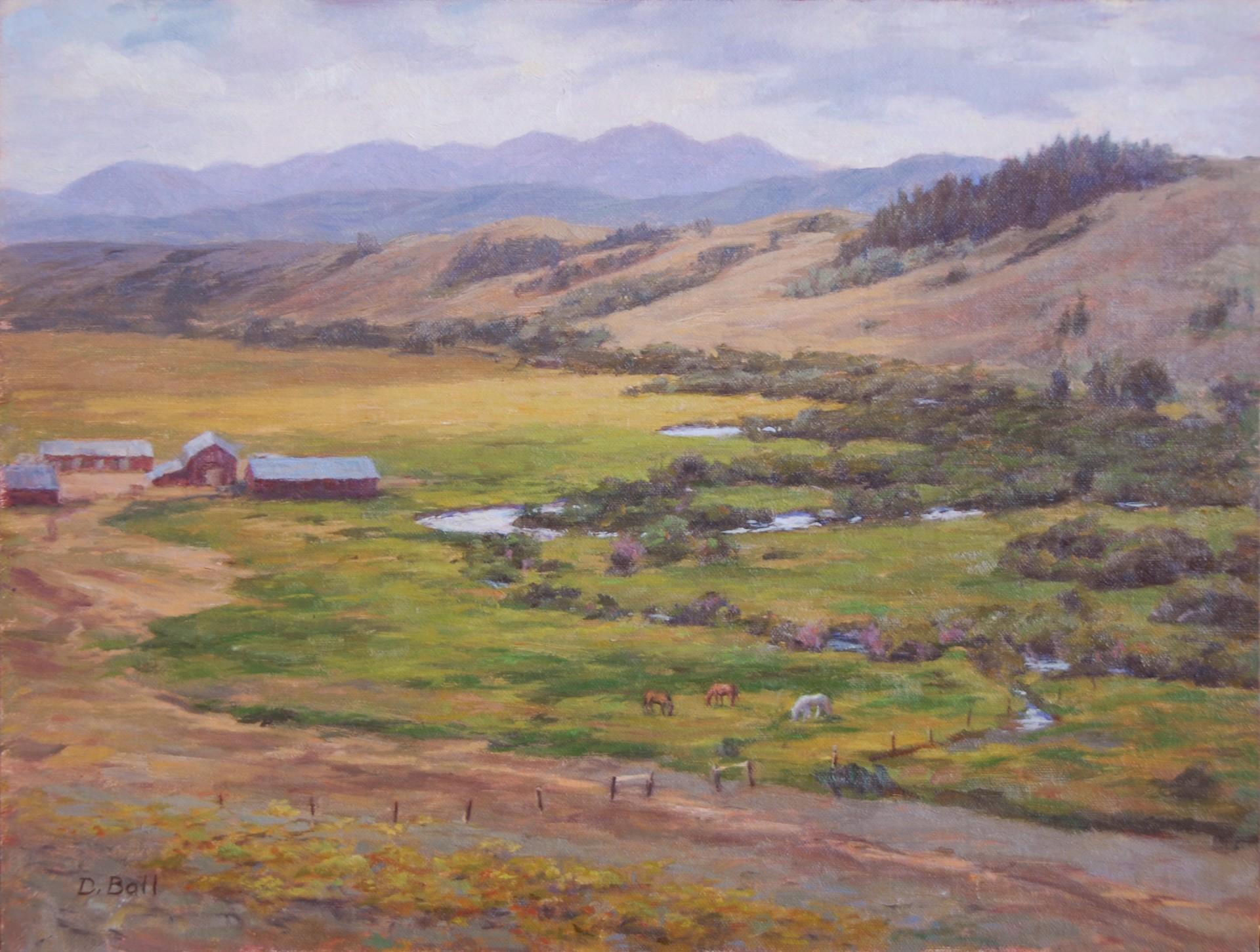 Diamond Tail Ranch by Douglas Ball