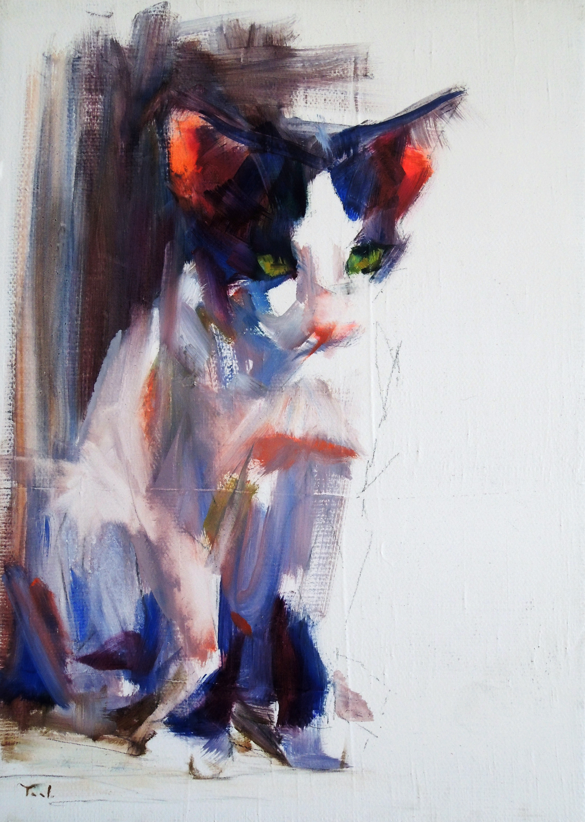 Kitten Study by Yael Maimon