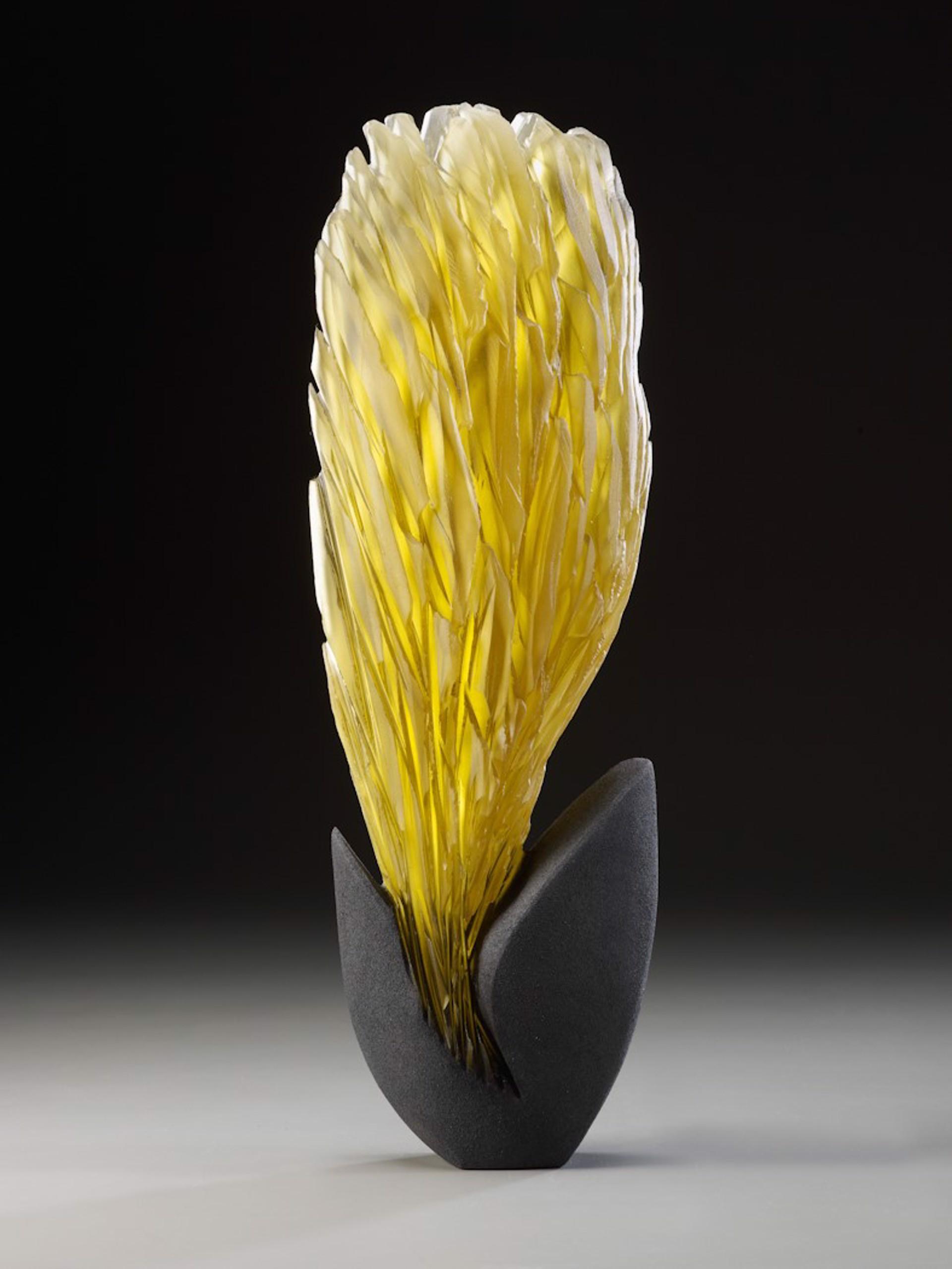 Gold Burst by Alex Bernstein