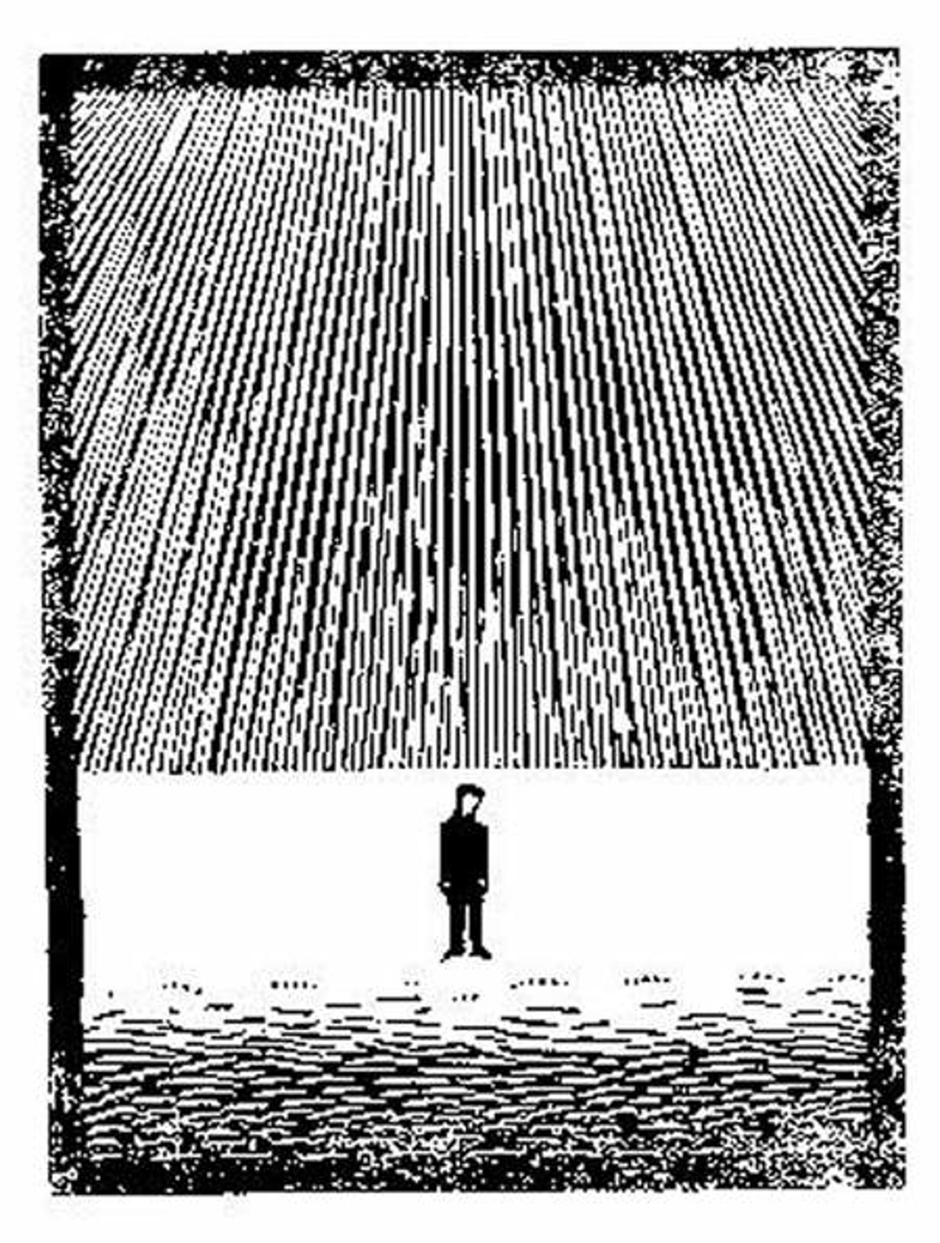 Flor de Pascua - Untitled/? by M.C. Escher