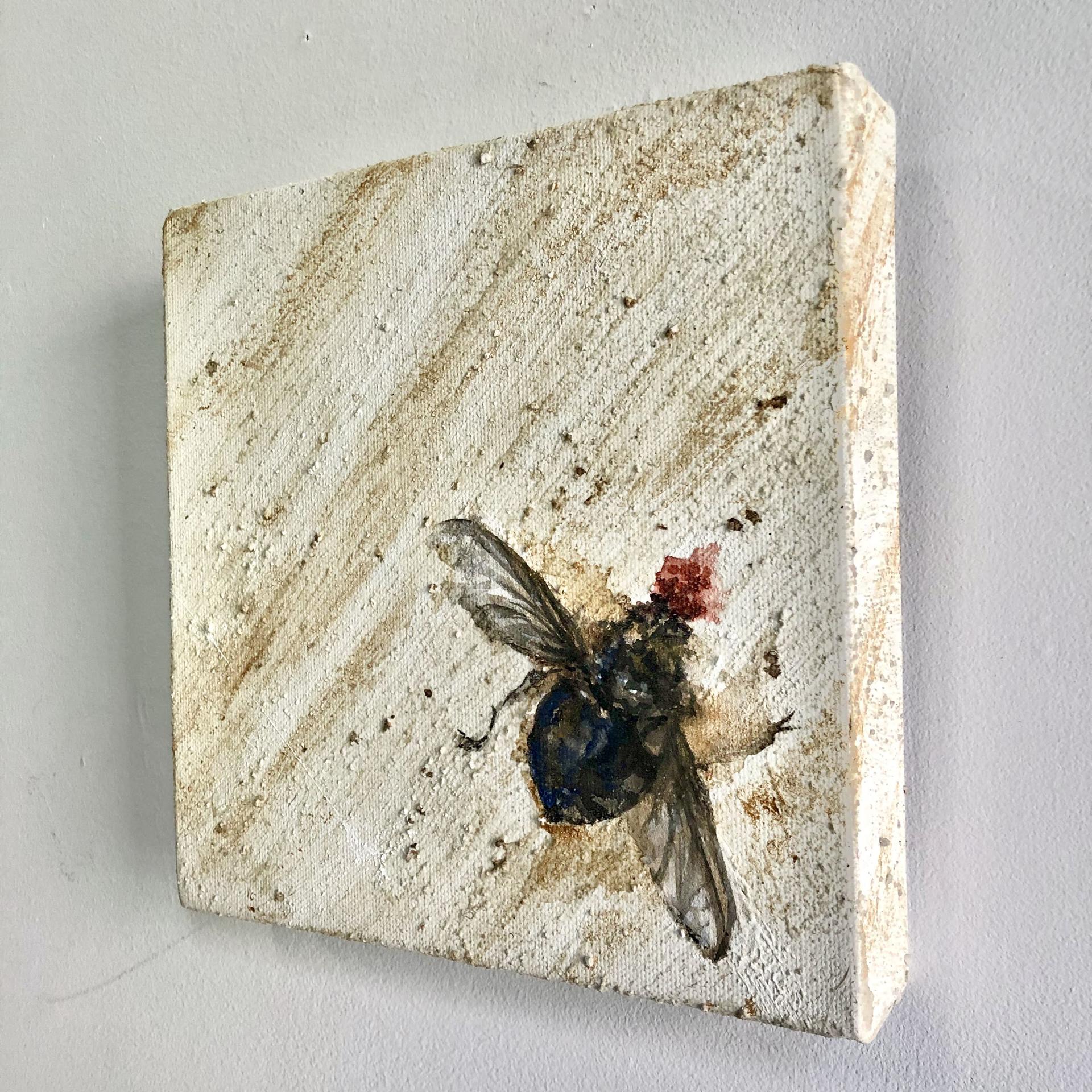 Splat by Cindy Shih