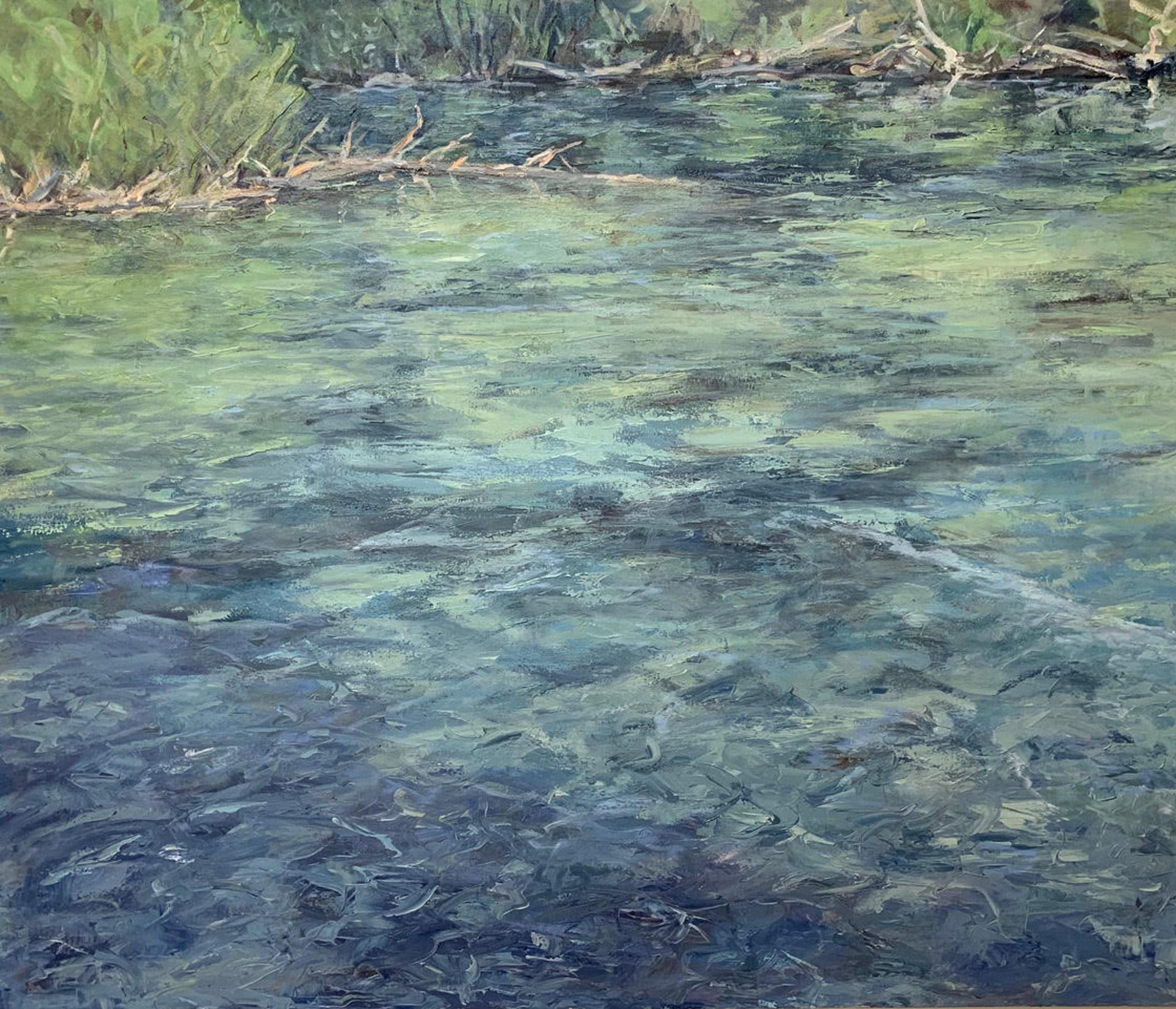 Cool Waters by Susu Meyer