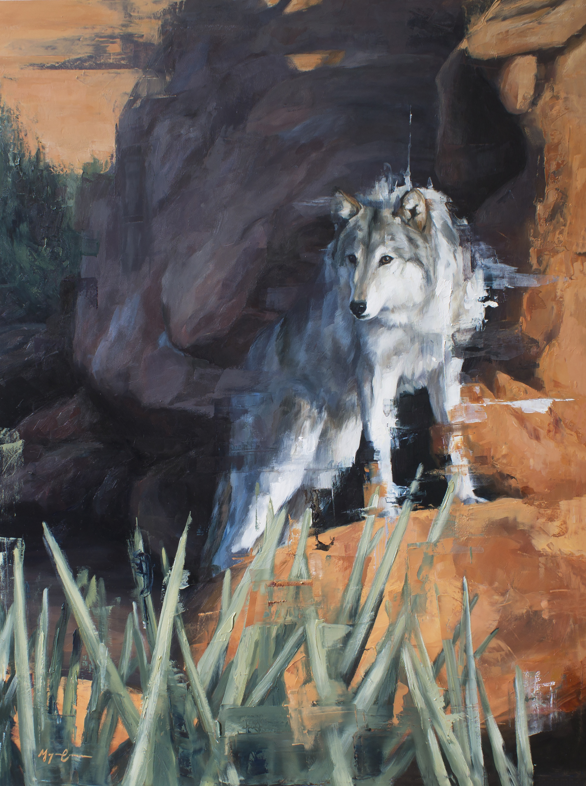 Canyon Wolf by Morgan Cameron