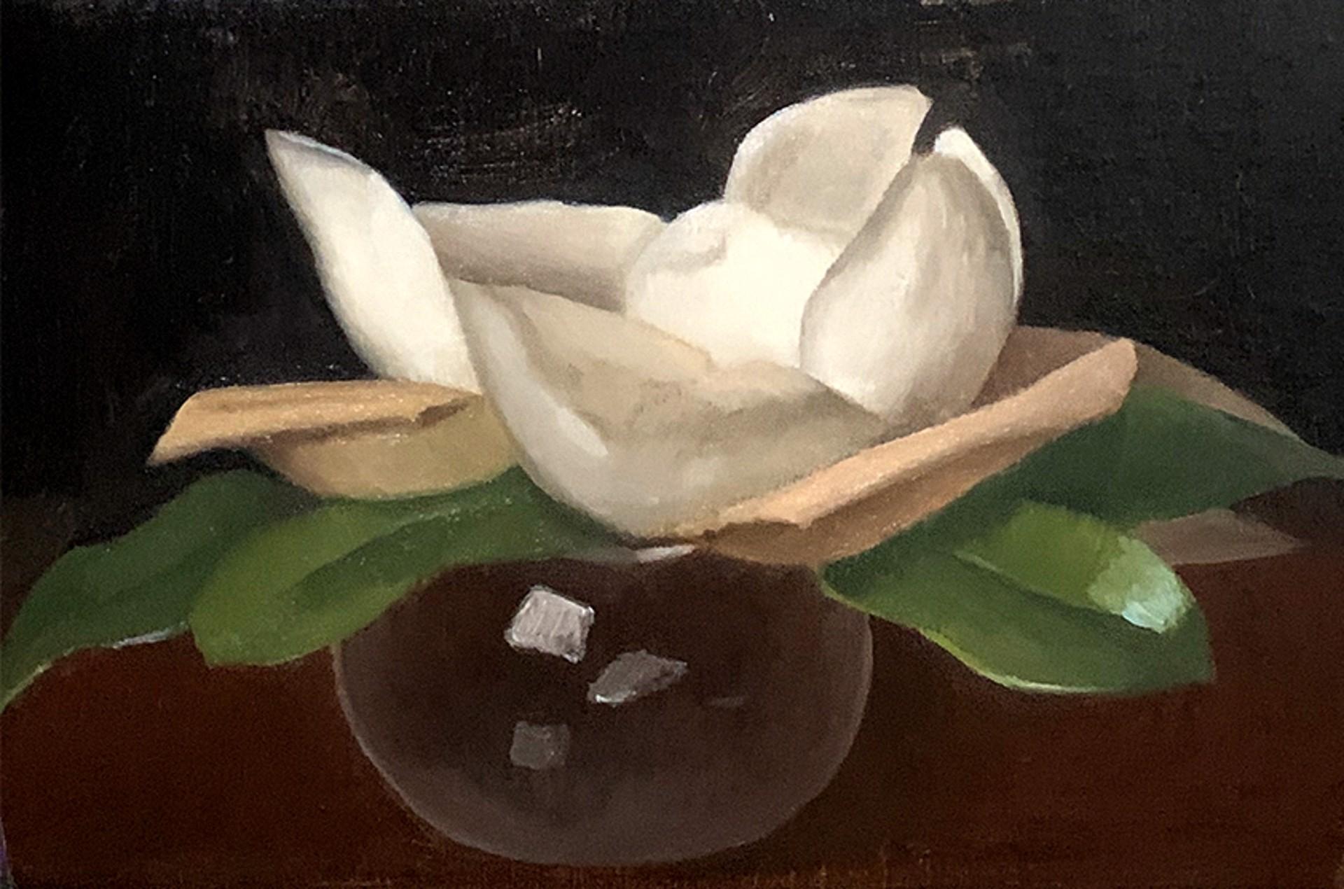 Magnolia Blossom by Laura Murphey