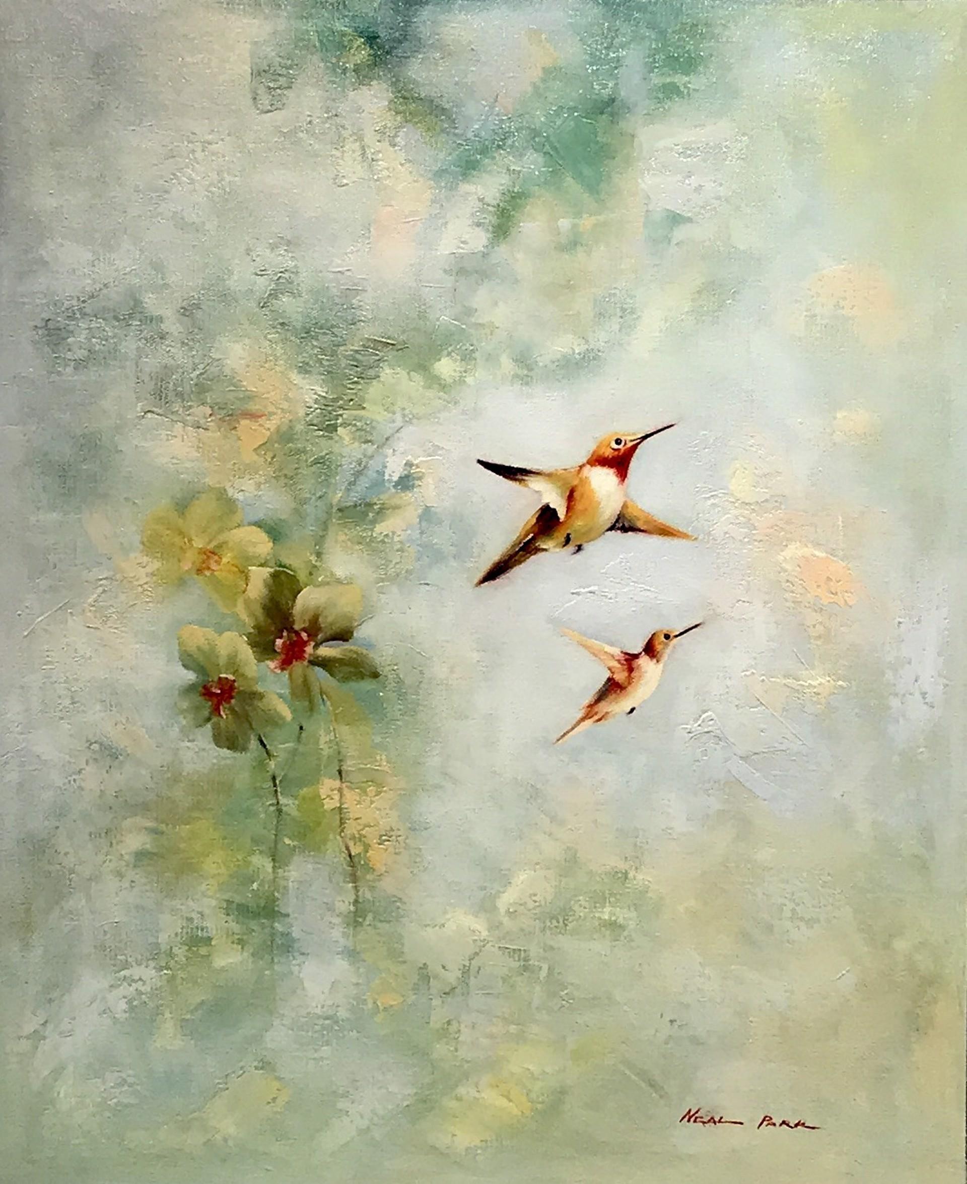 HUMMINGBIRDS by NEAL PARK