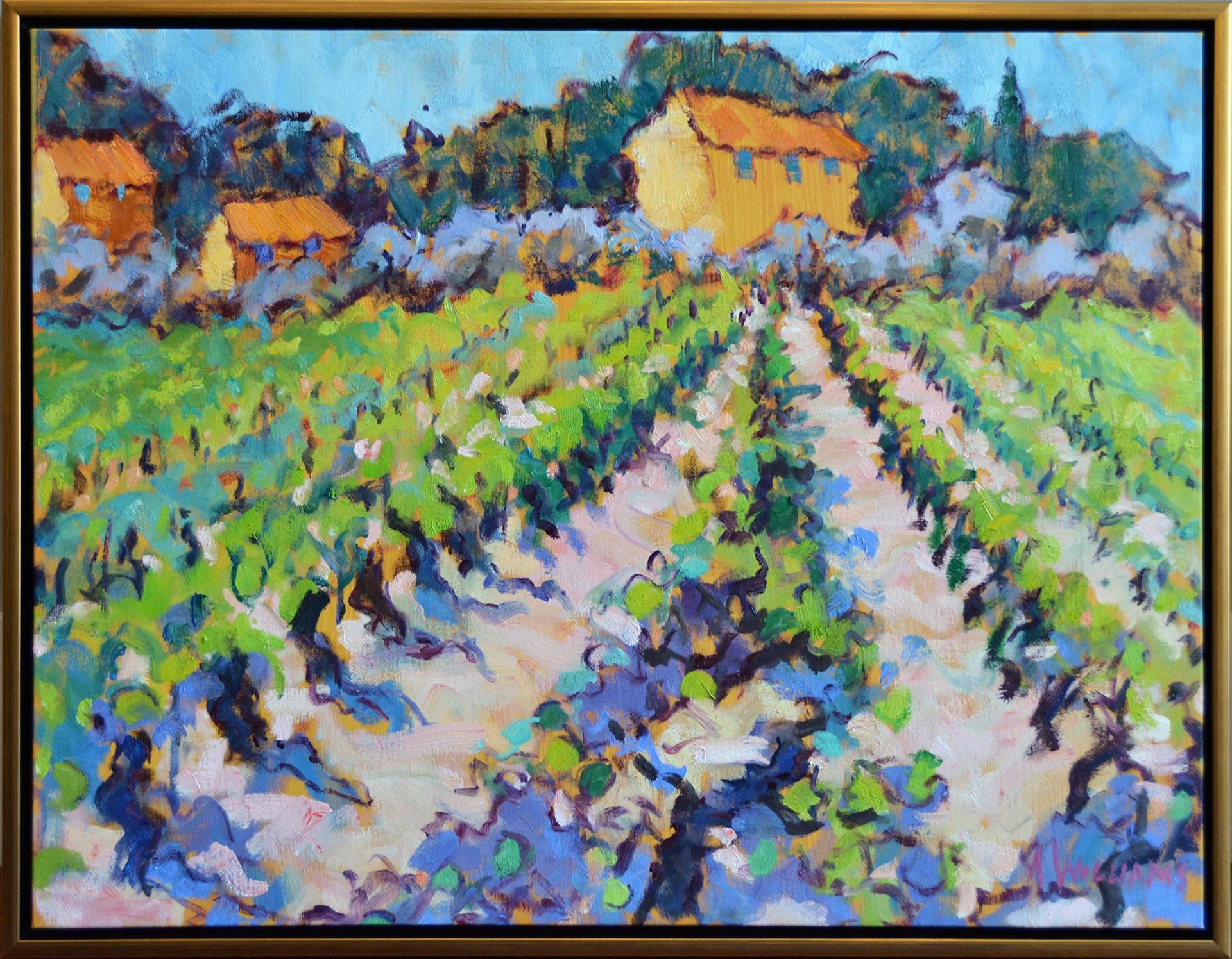 A Vineyard Near Cucuron by Alice Williams