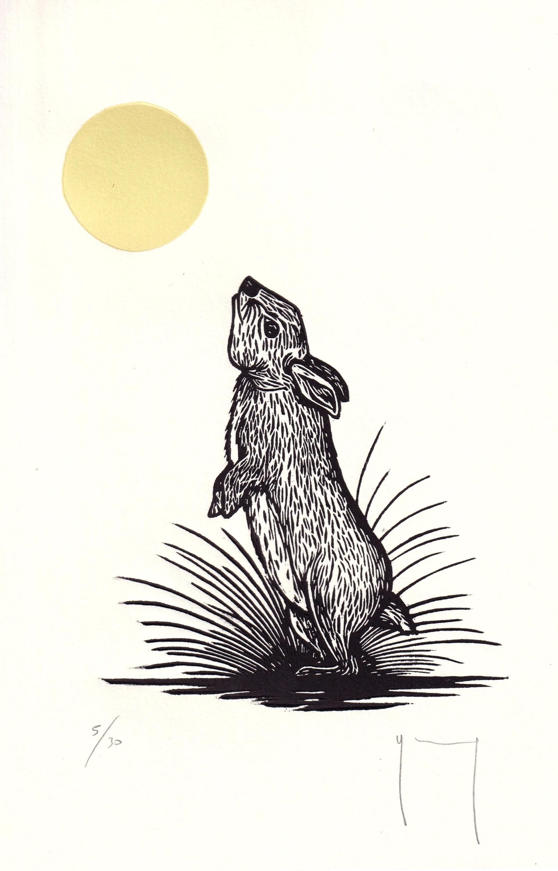 Serie Sol (Conejo) by Miguel Jimenez Martinez