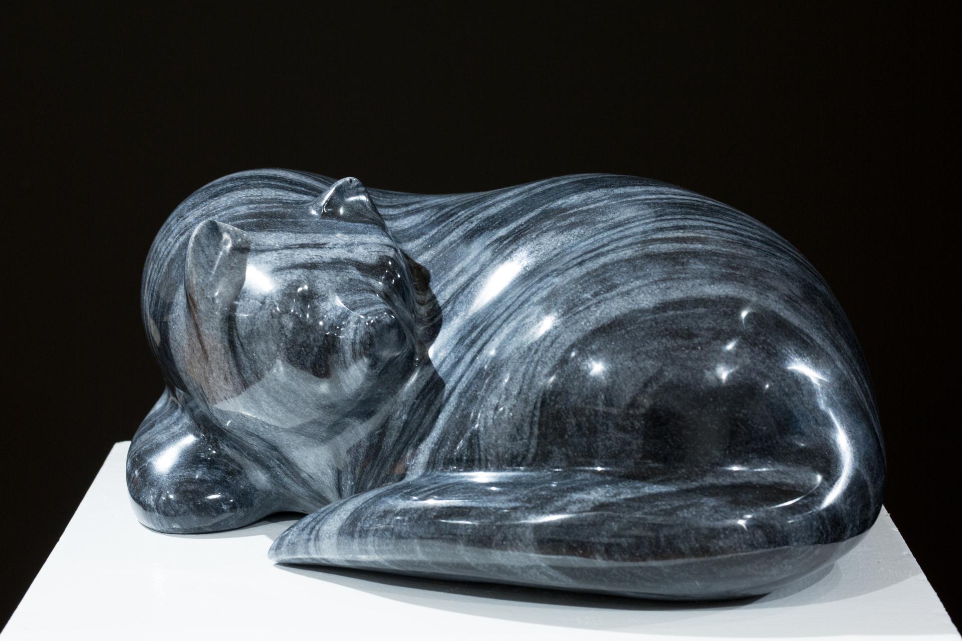 Sleeping Cat by Gert Olsen
