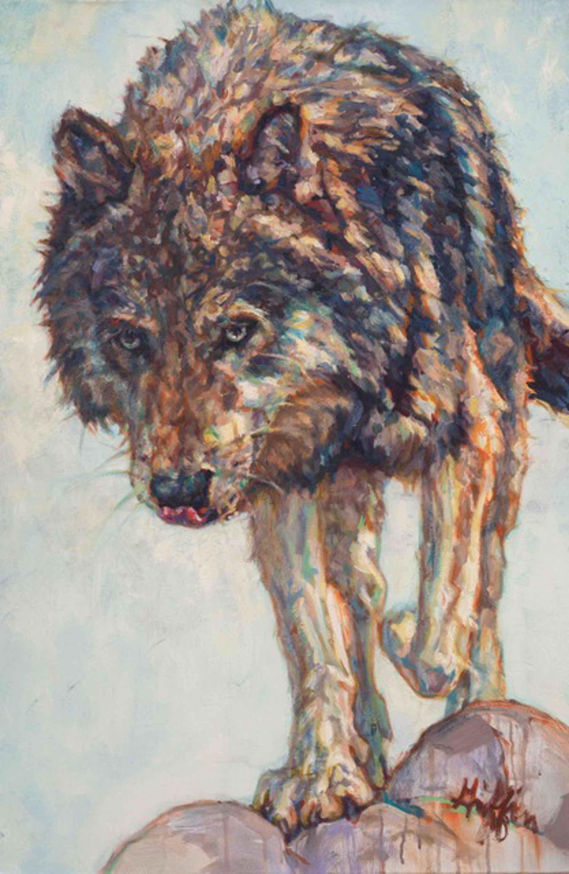 Oil Painting Of A White Gray And Brown Wolf Coming Over Rocks Towards The Viewer Licking Its Nose