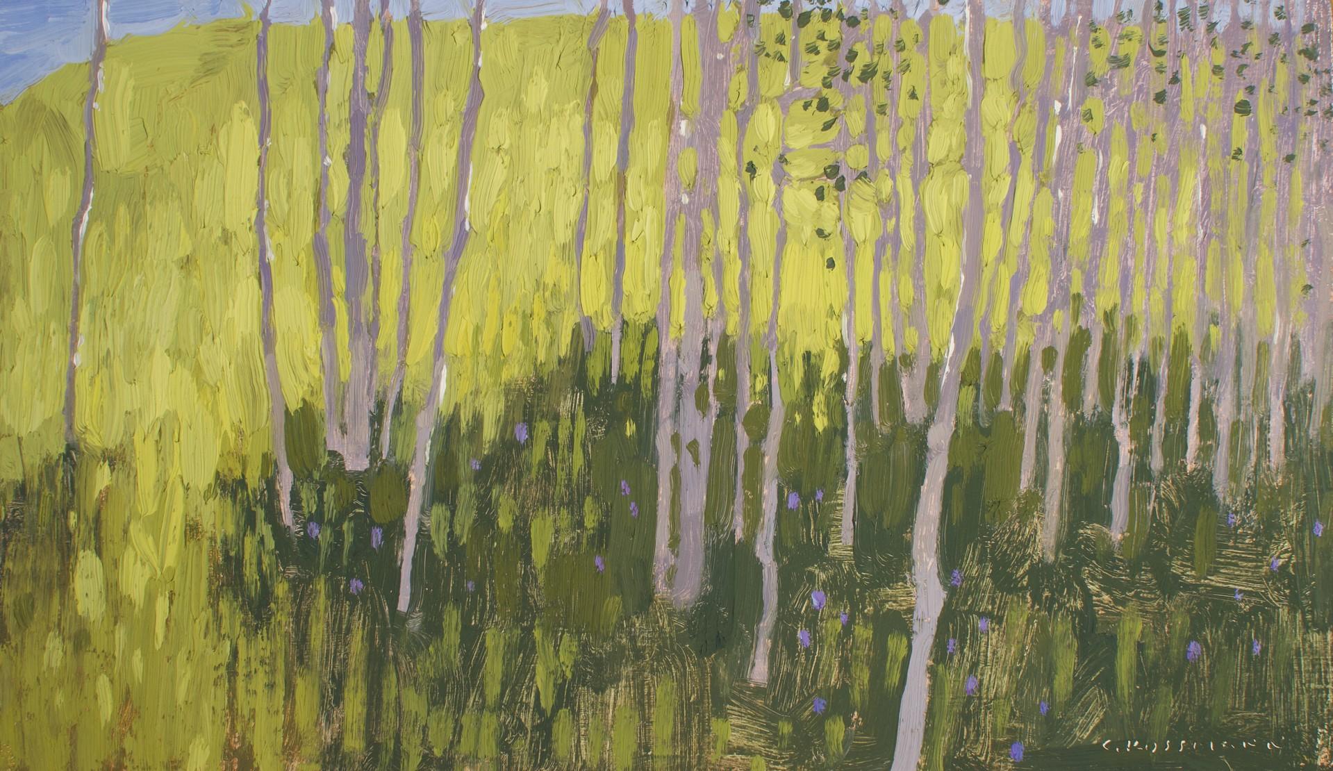Morning Light and Aspen Shade by David Grossmann